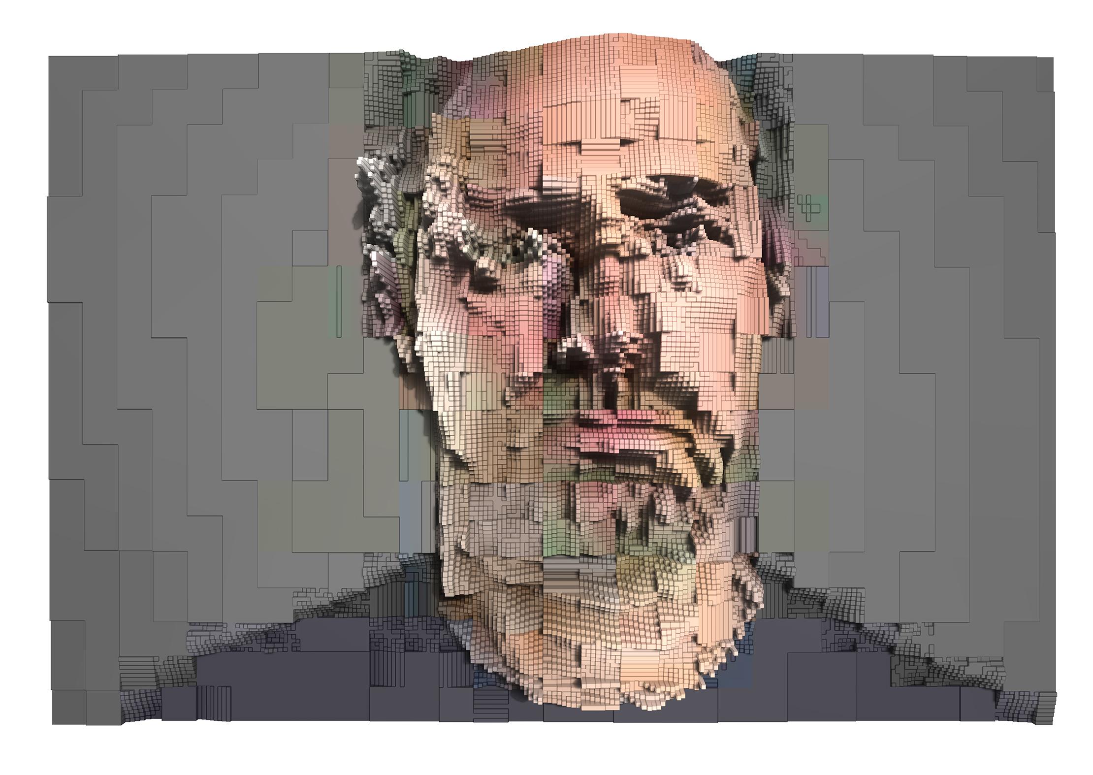 JPG Portrait , (2017, pigment print).