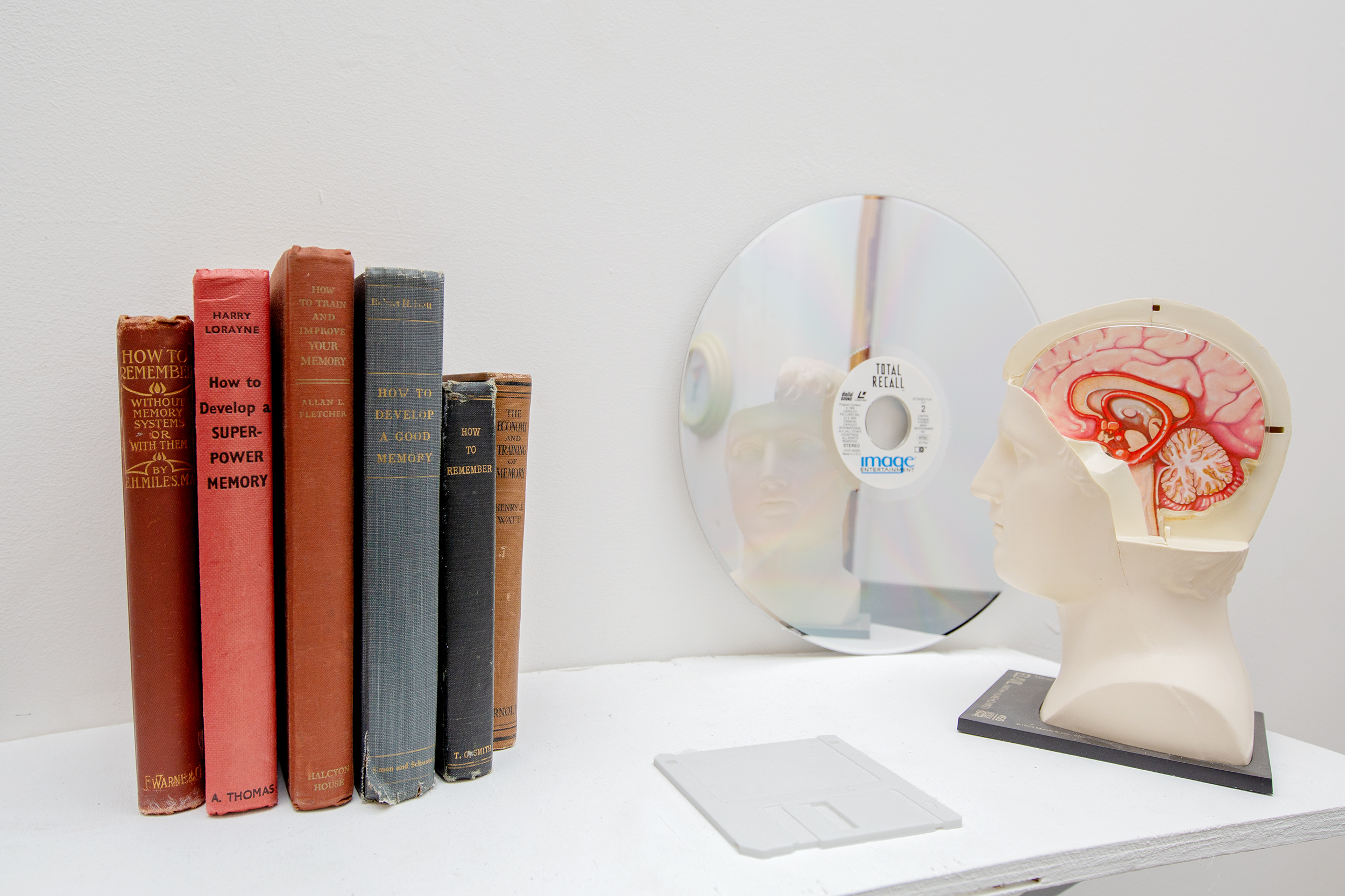 The Contours Of What Is Not, Or Is No Longer, Or Is Not Yet  2018, laserdisc, promotional pharmaceutical head, books, 3D prints.