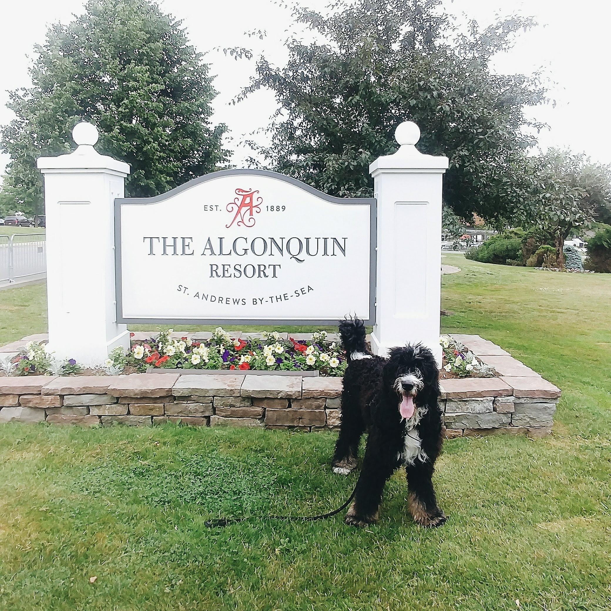 Algonquin Resort, Saint Andrews