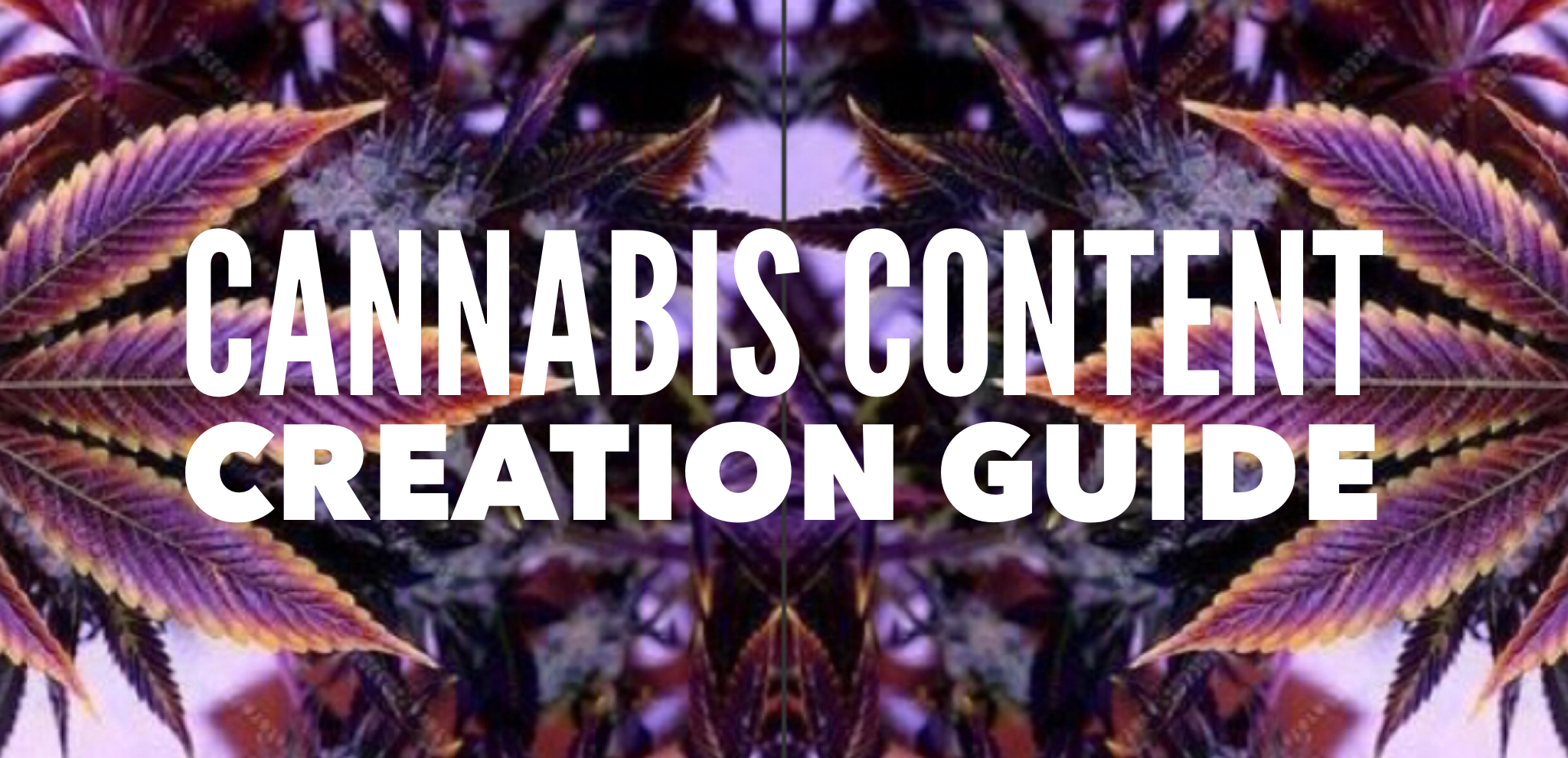 cannabiscontentcreationguide.png