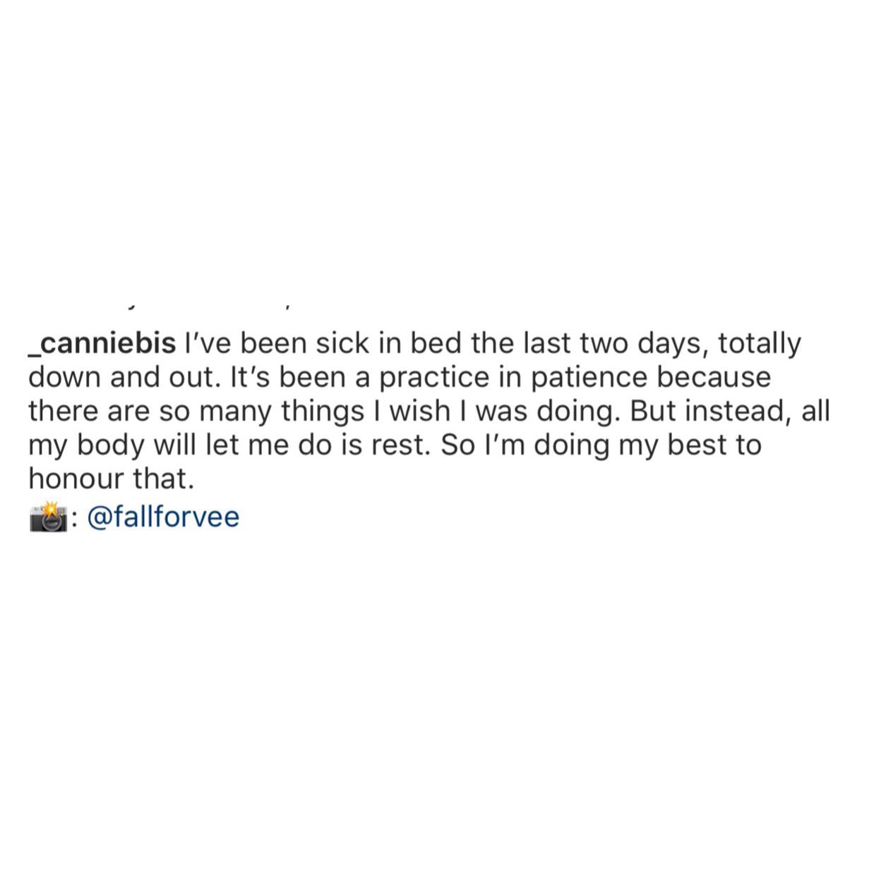 Canniebis social media influencer