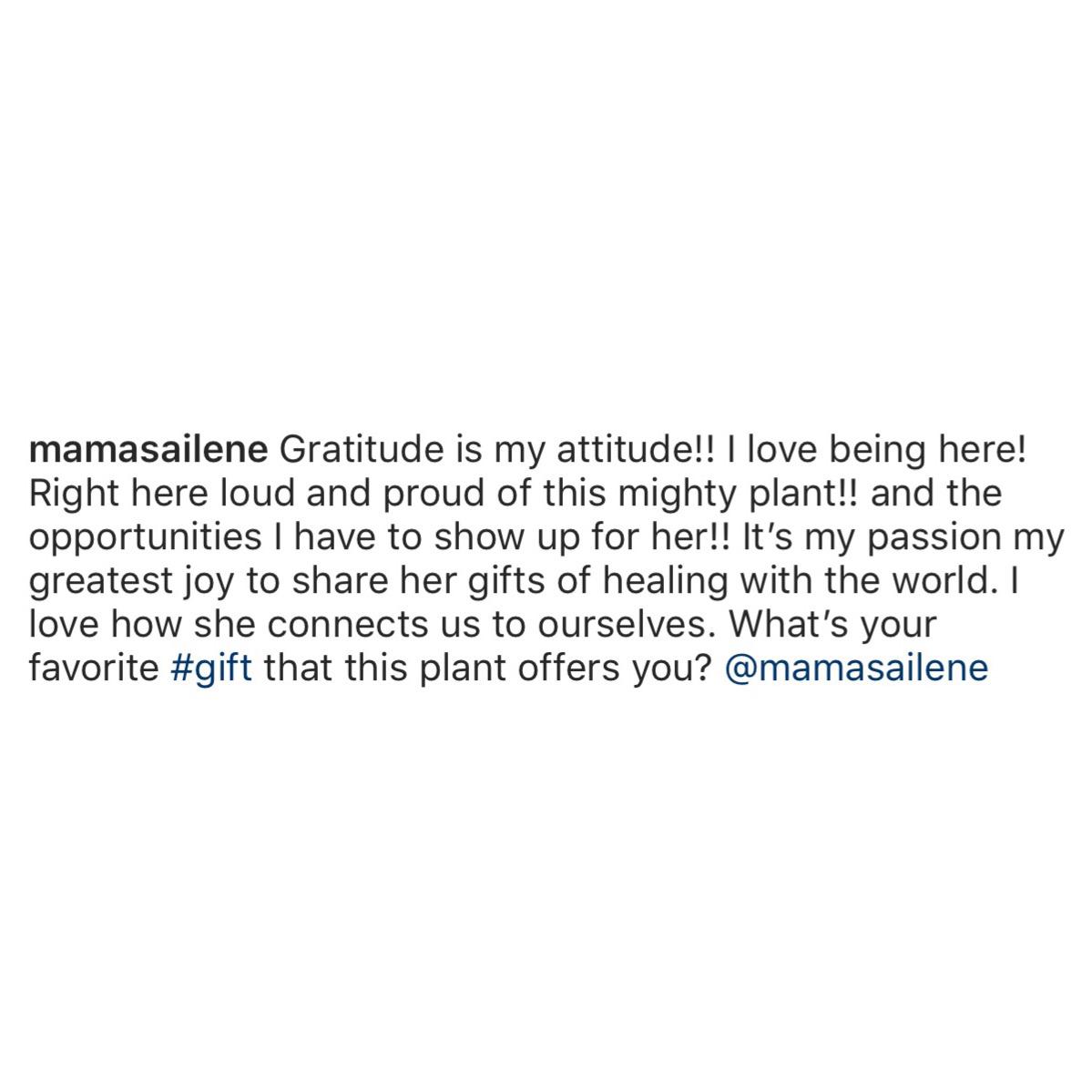 mama sailene cannabis influencer
