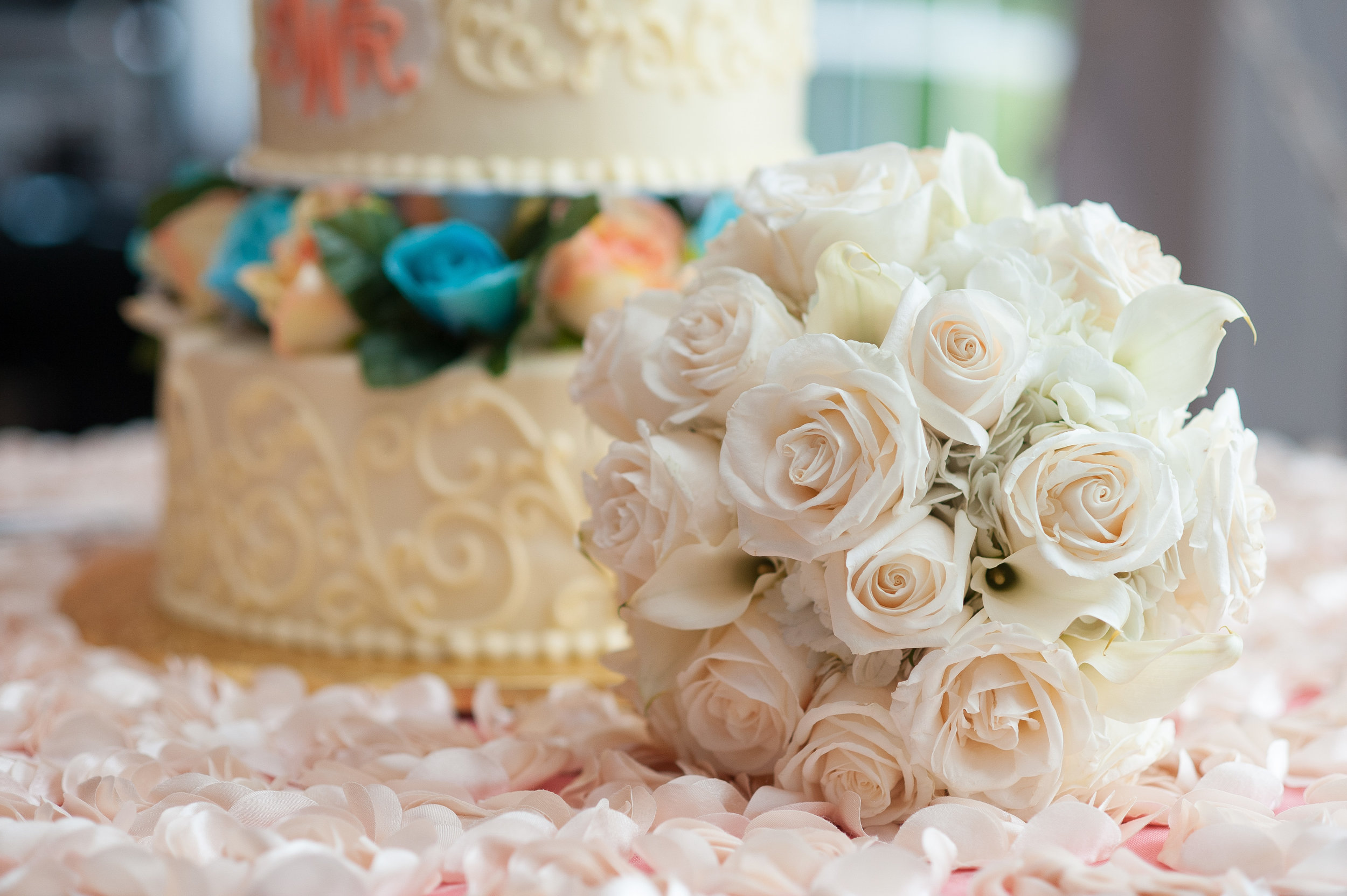White Wedding (488 of 666)-2.jpg