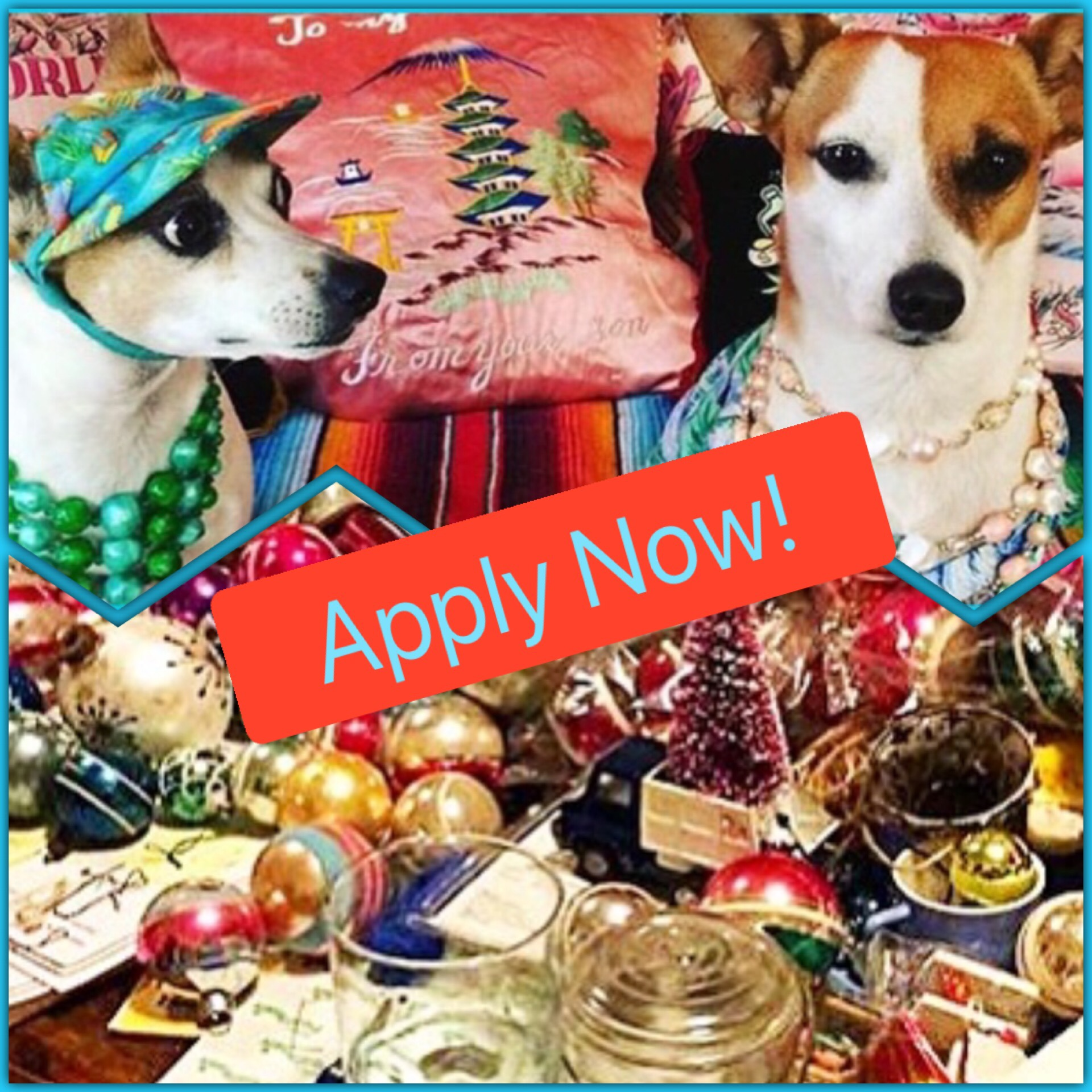 Vendor Application - Want to be a vendor at the 2019 Craft and Kitsch Market? Apply today! Application deadline is August 7, 2019.