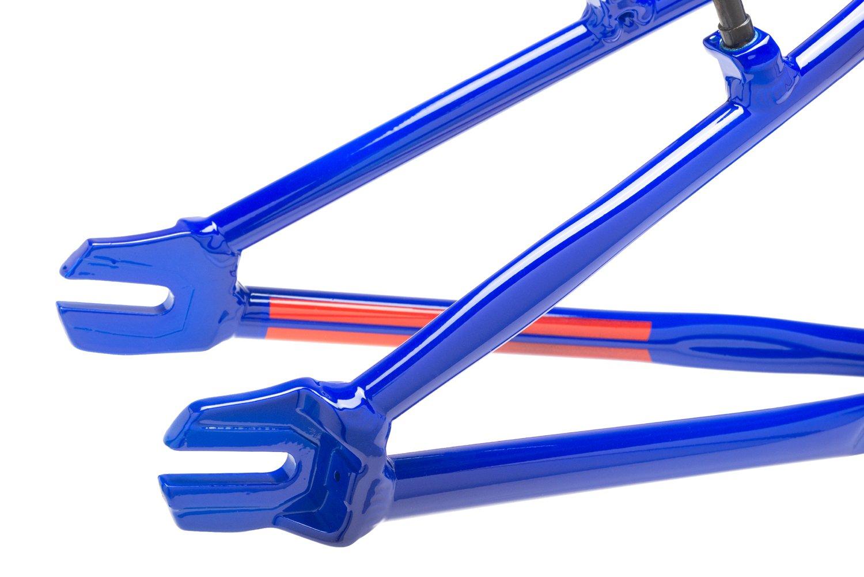 ProLite-Blue-2.jpg