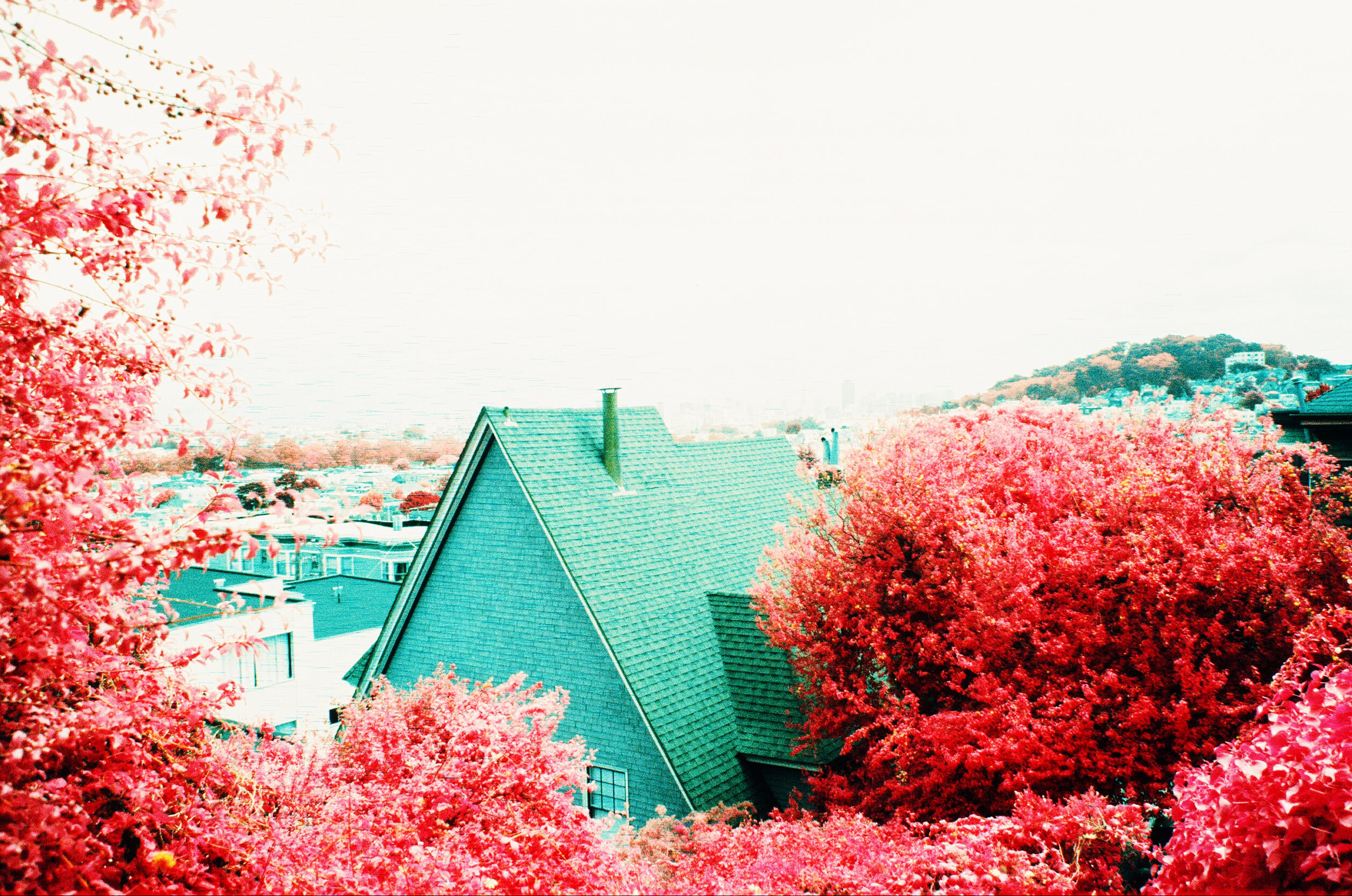 Dolores Heights, San Francisco