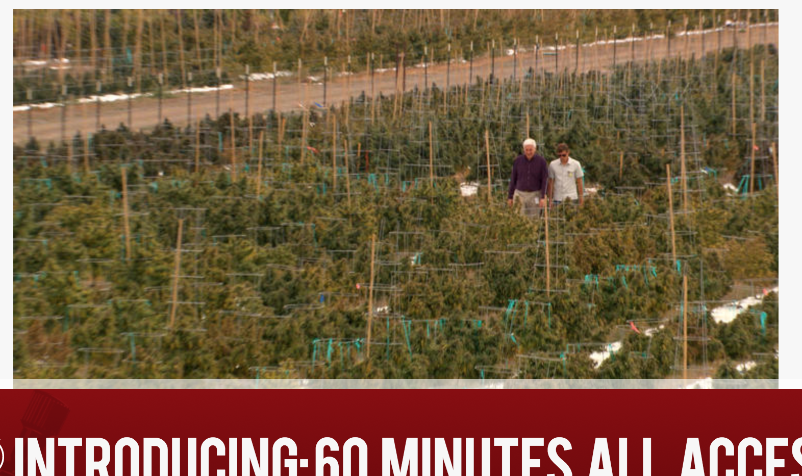 60 Minutes - Interview with Jonathan Lapook on site of Los Sueños Farms. - 2016