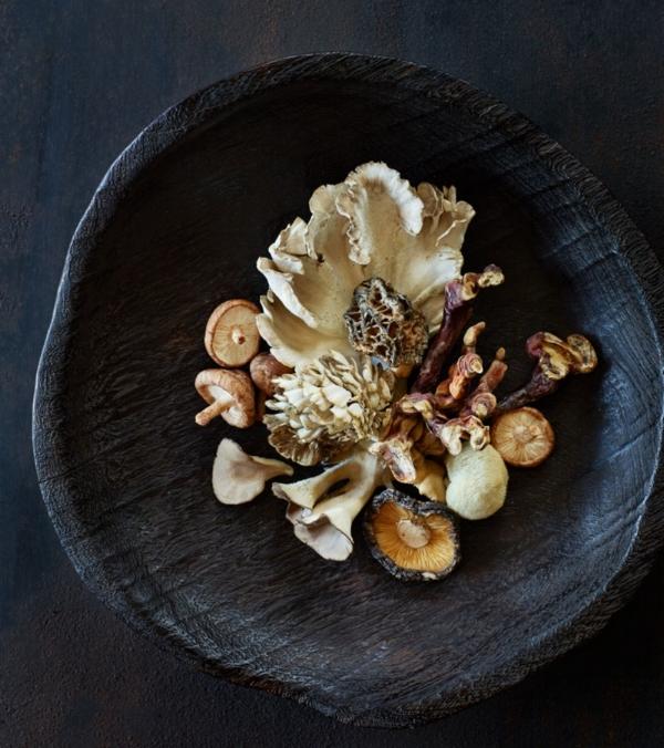 amazing-mushrooms.jpg
