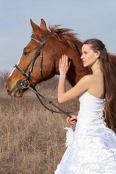 wedding pet care