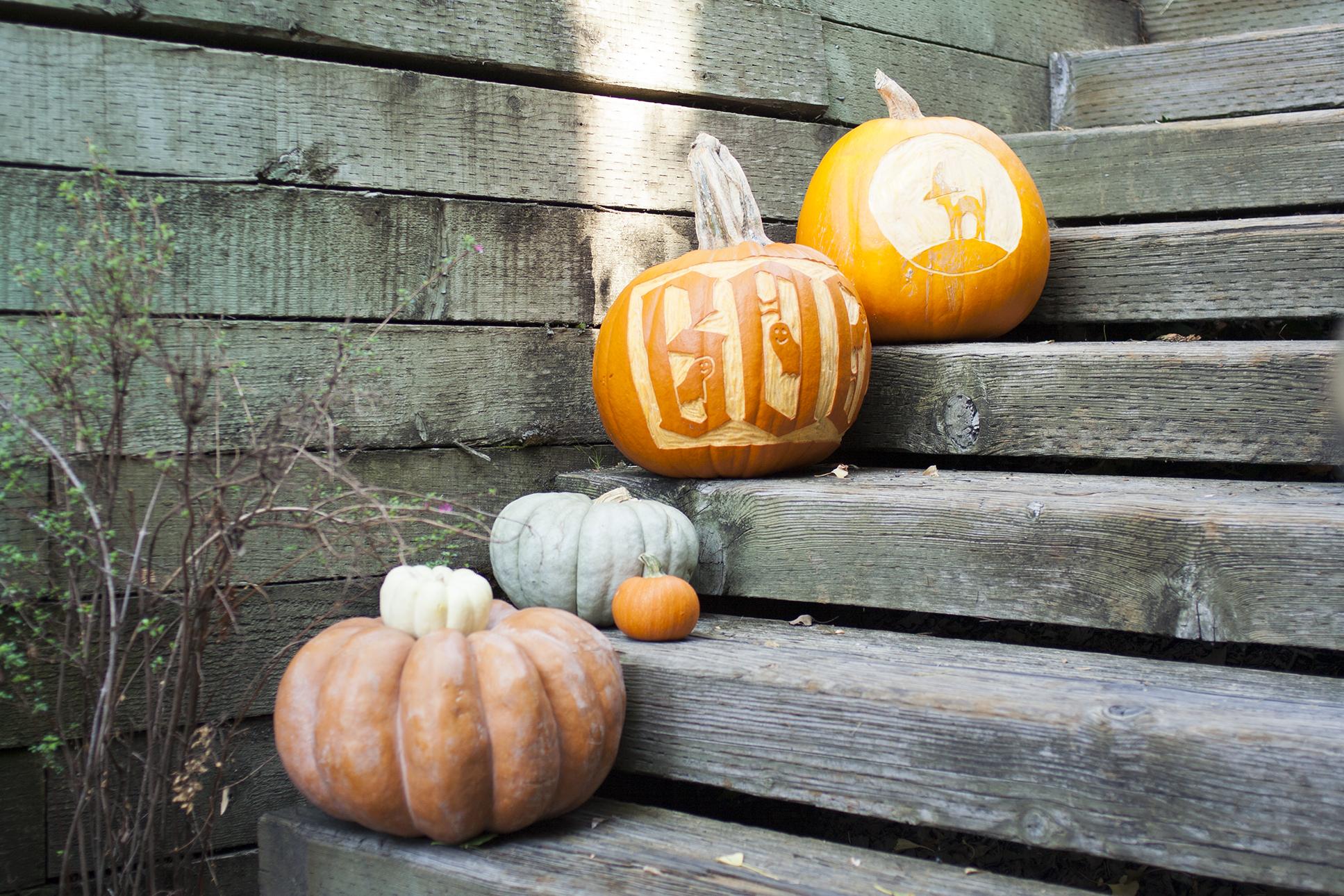 variety-of-pumpkins-on-doorstep.jpg