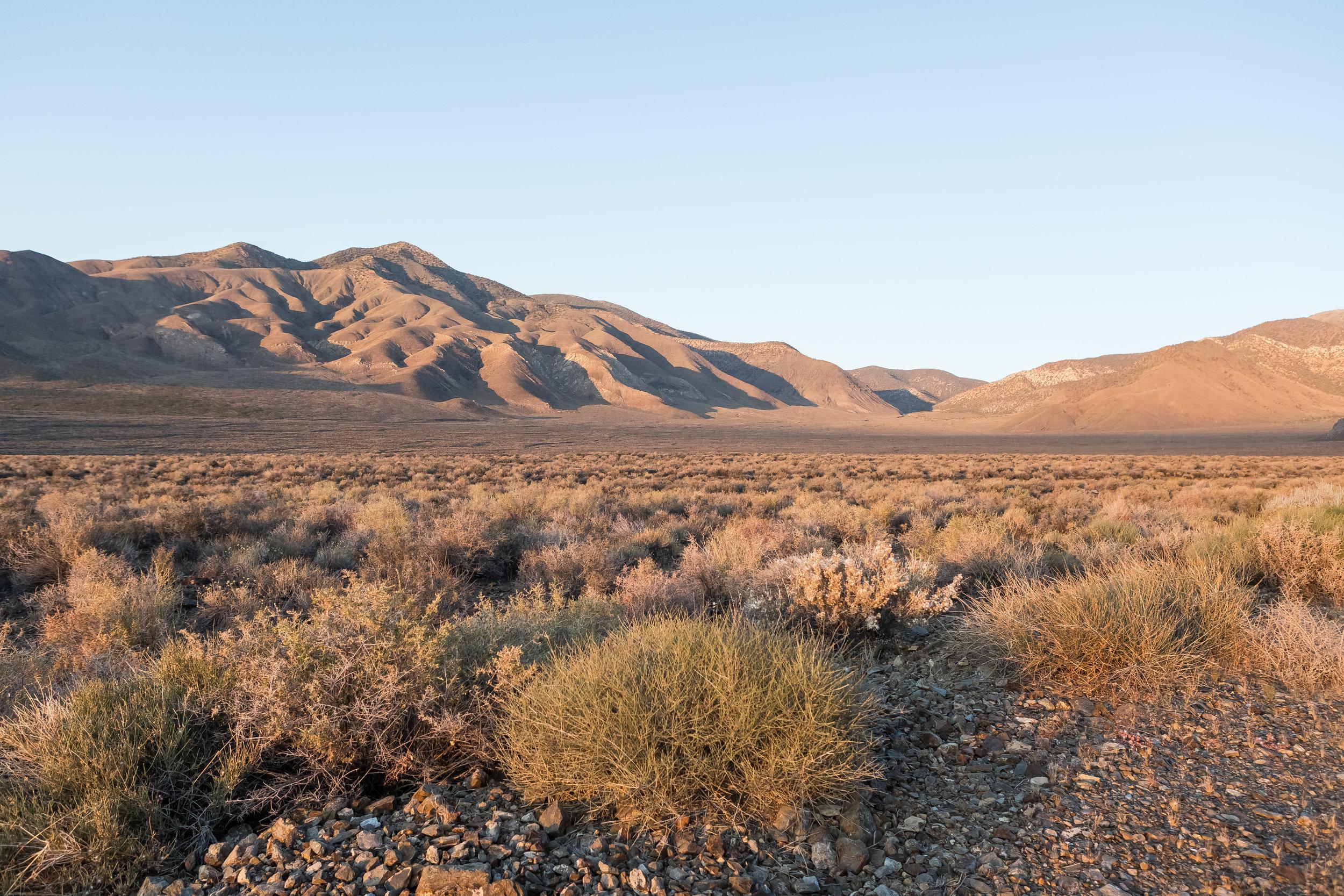 DesertDusk.jpg
