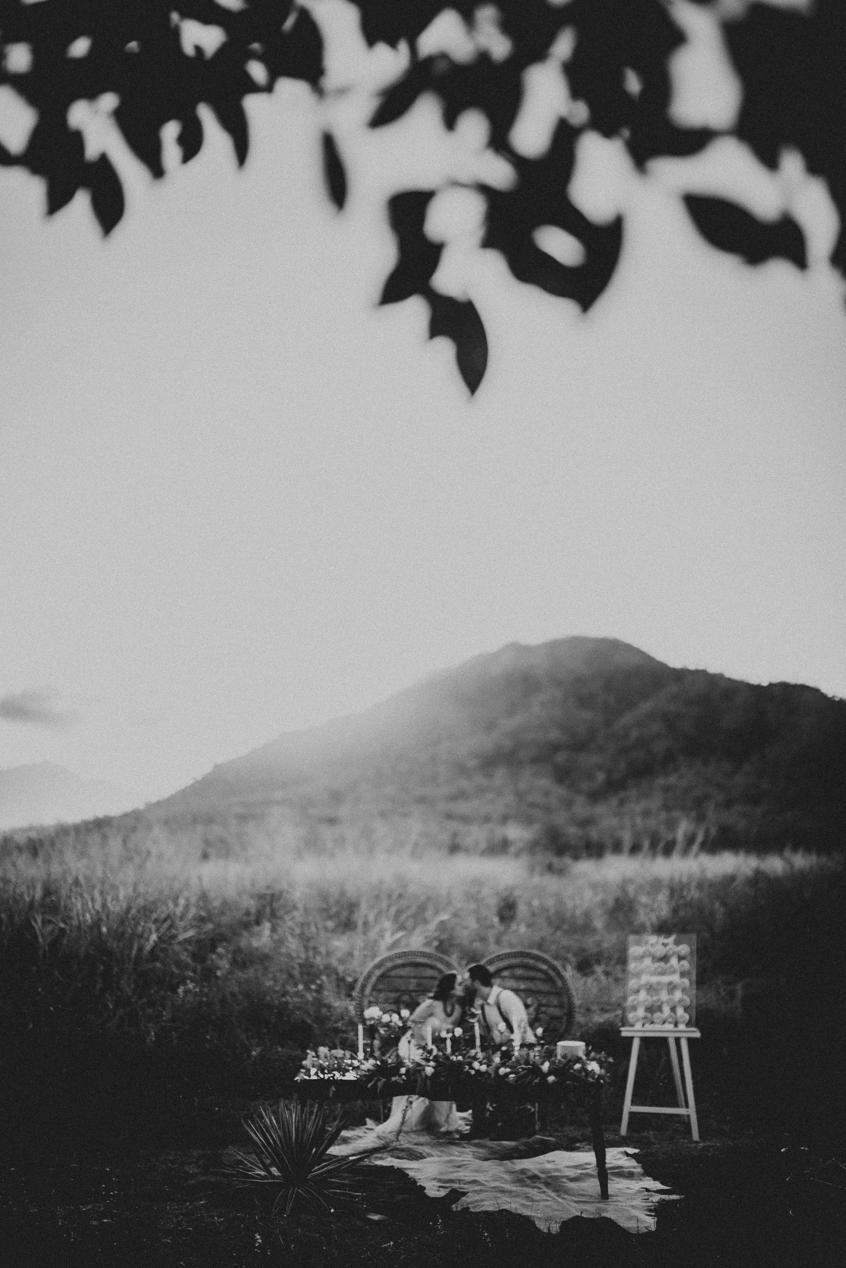 Camilla-French-Photographer-Elopement-Wedding-Intimate-Couples-Families-Maternity-Townsville-Cairns-Queensland-Australia-20.jpg