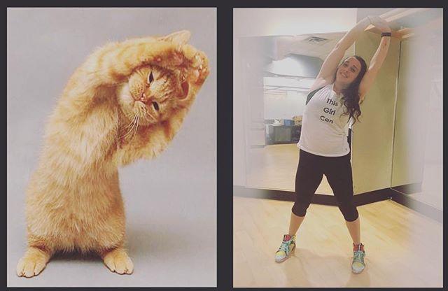Who did it better #Hailey or #kitty? ⠀ #animalyoga #kittyyoga #KickAssYoga ⠀ .⠀ .⠀ .⠀ .⠀ .⠀ .⠀ #yogachallenge #workout #yogajourney #yogaeverywhere #positivevibes #yogapose #yogis #yogatime #instayoga⠀ #flexible #healthandwellness #healthy #balance #pilates⠀ #fitnessmemes #gymfail #crossfitfail #tsy #alignedlife #fitnessblogger #hotbod #selfcare #yogachallenge #yogajourney #yogaeverywhere