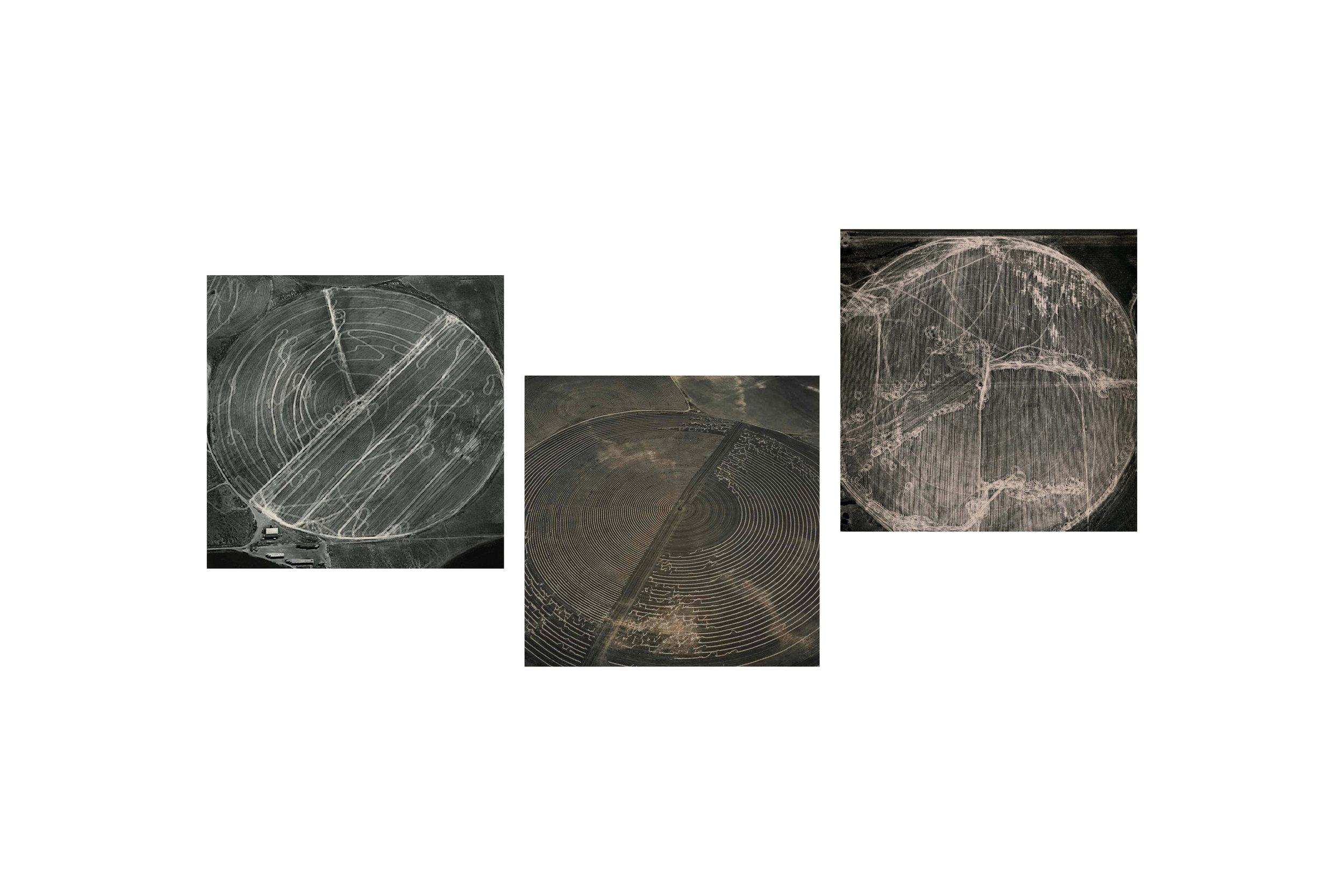 cropcircles.jpg