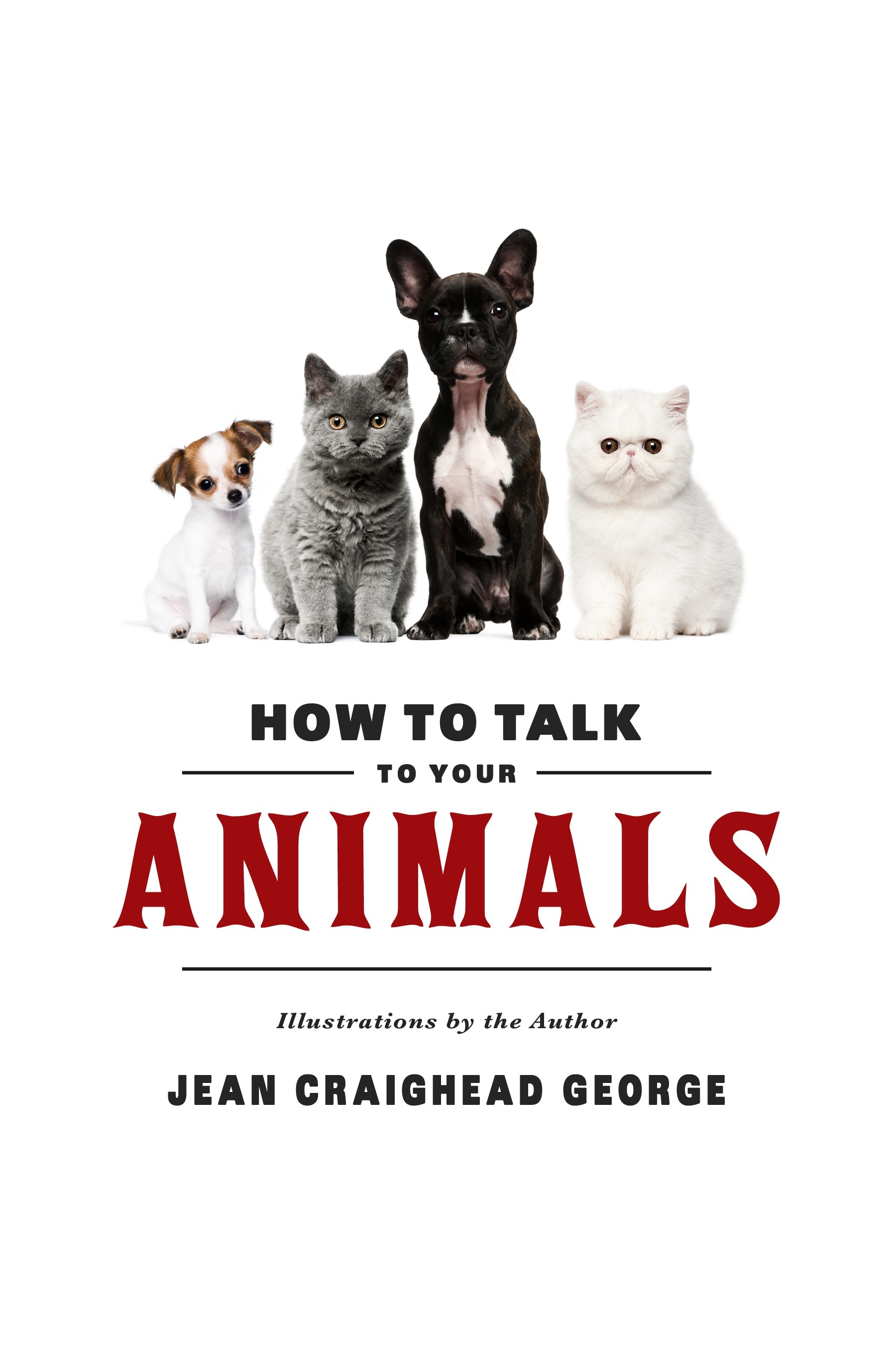 How to Talk to your Animals_edited.jpg