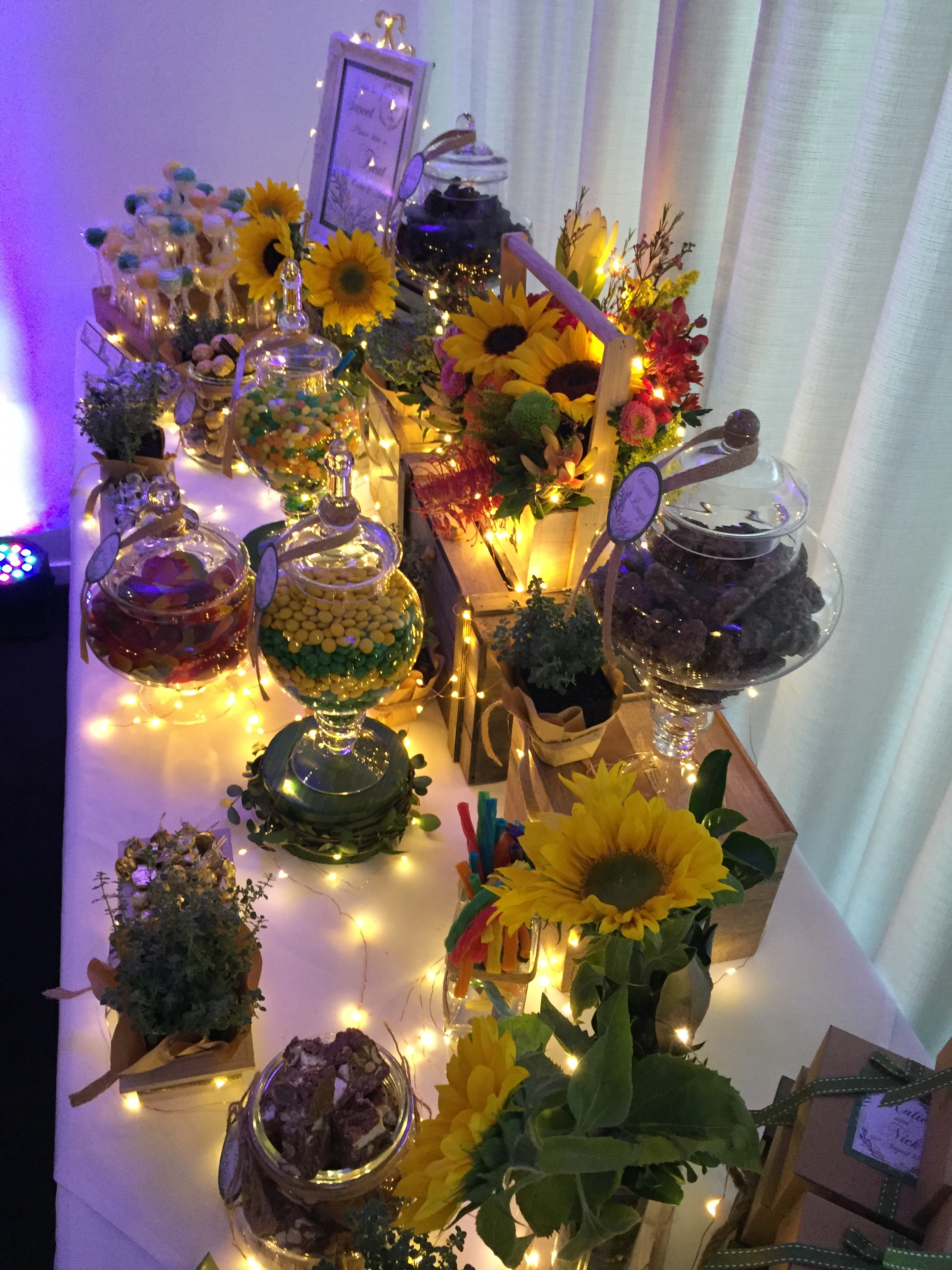 Sunflowers Thyme Lolly Buffet 8