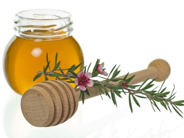 Manuka Honey..... or Manuka essential oil.... -