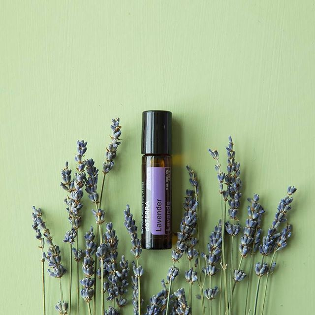 Did you know that doTERRA gives loyal member a product free every single month?! And this month we're receiving a free lavender in our beautiful roll on. I LOVE all of the free healthcare💜 . You can get started with free health care too by going to the link in my profile and click on the Getting Started Tab. . . .  #blessed #essentialoil #essential #doterra #aromatherapy #jobopportunity #healthytips #holistic #braintumor #sahm #natural #skin #happy #youngliving #instagood #healthy #natural #kids #oils #oil #love #detox #doterra #healthytips #naturalliving #livenatural #photooftheday #essentialoils #allisonhuish