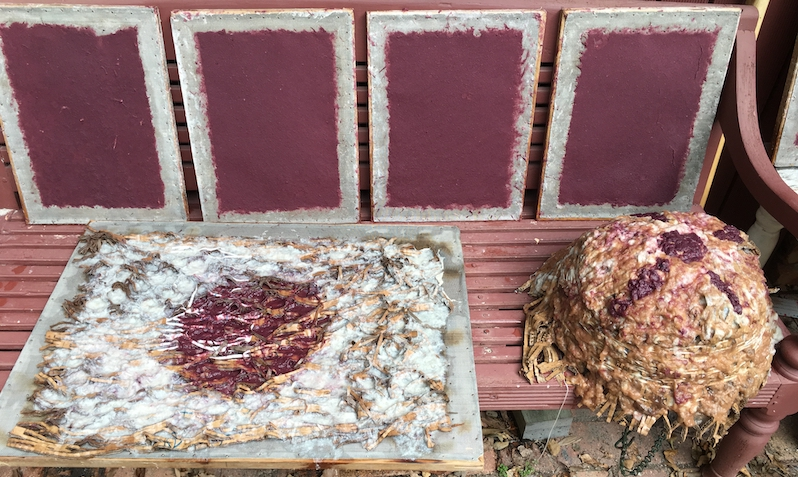 Plum paper and paper pulp through cardboard packaging experiments.