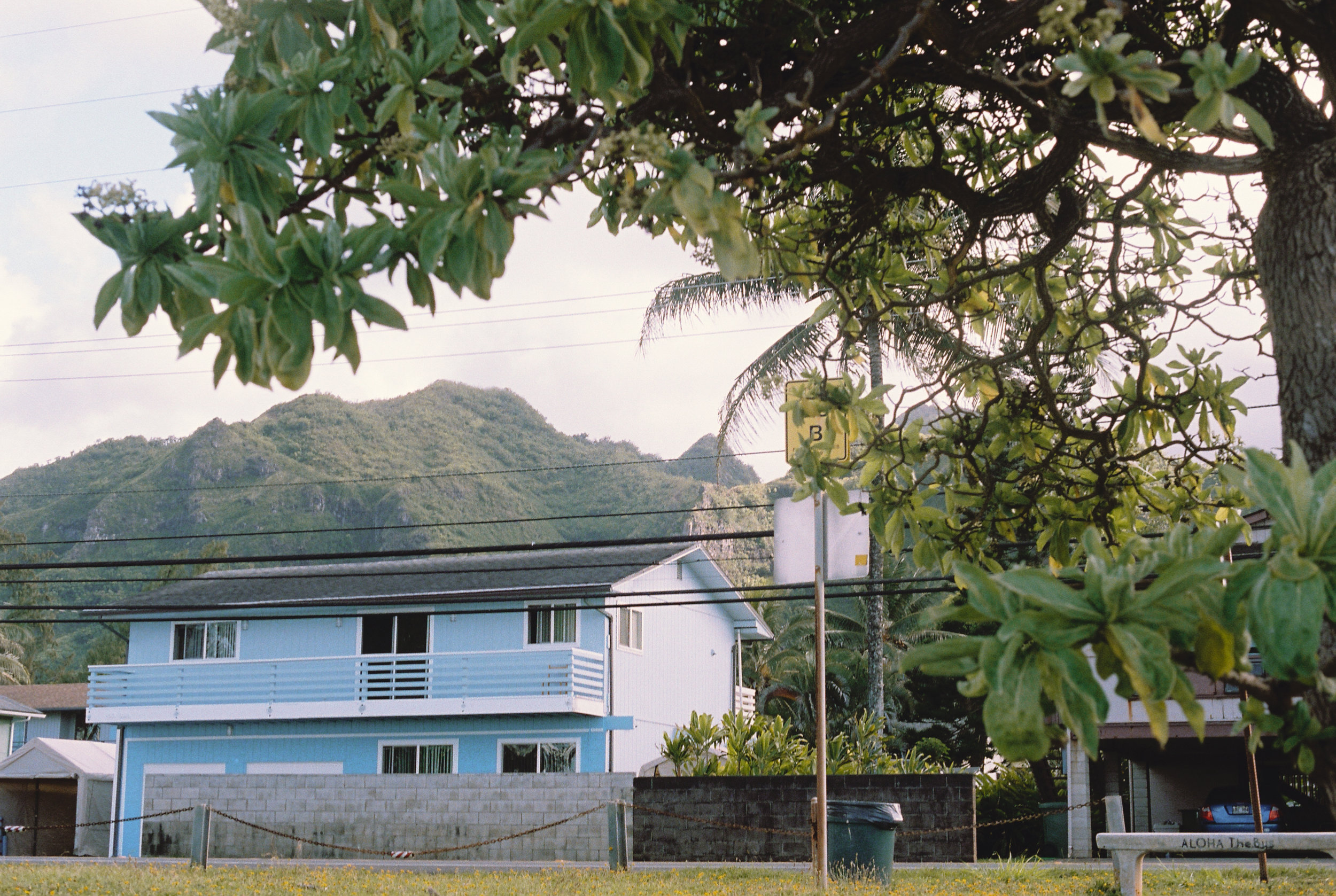 NB-Hawaii Film-3.jpg