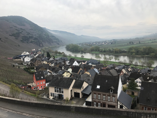 A beautiful morning on the Mosel River.