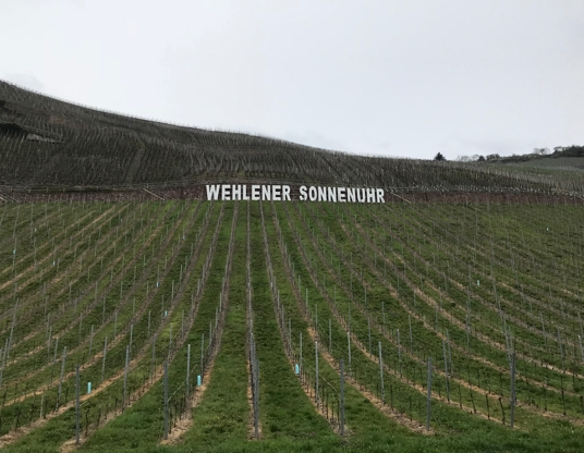 We wondered about these vineyard signs.