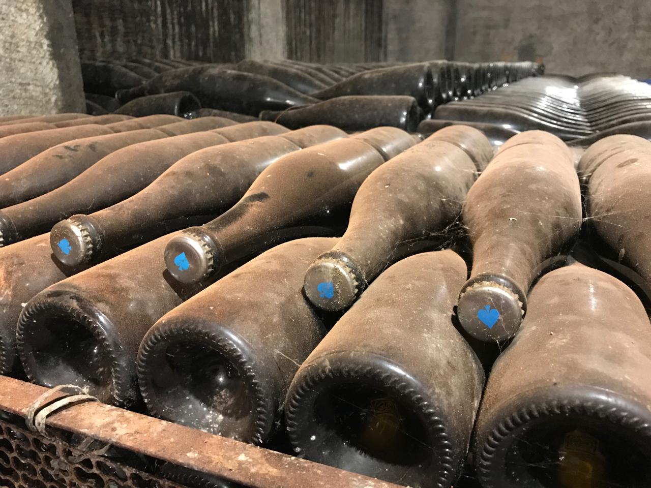 Sparkling wine undergoing bottle fermentation at Grover Zampa.