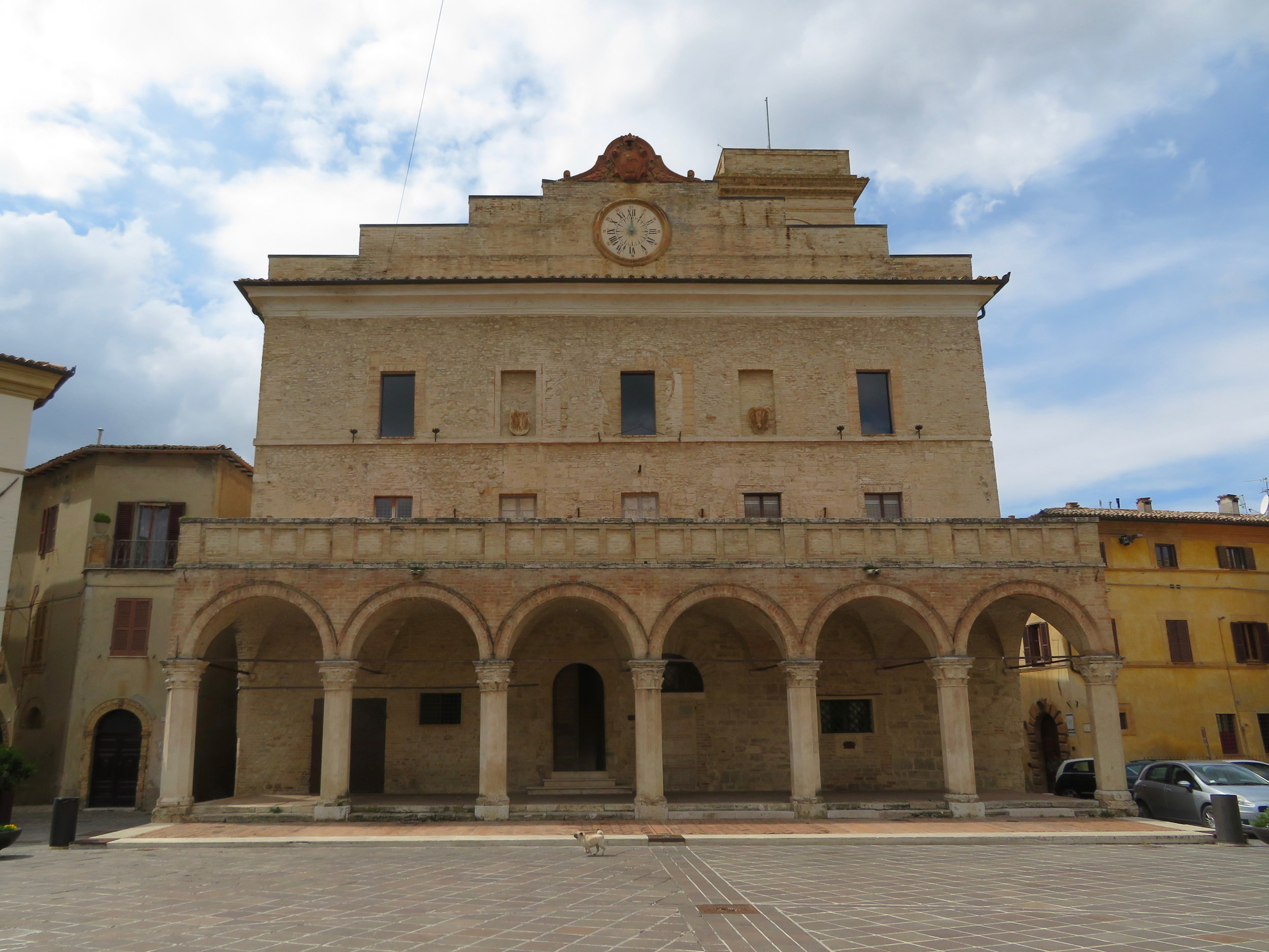 The piazza in Montefalco. Big building, tiny dog.