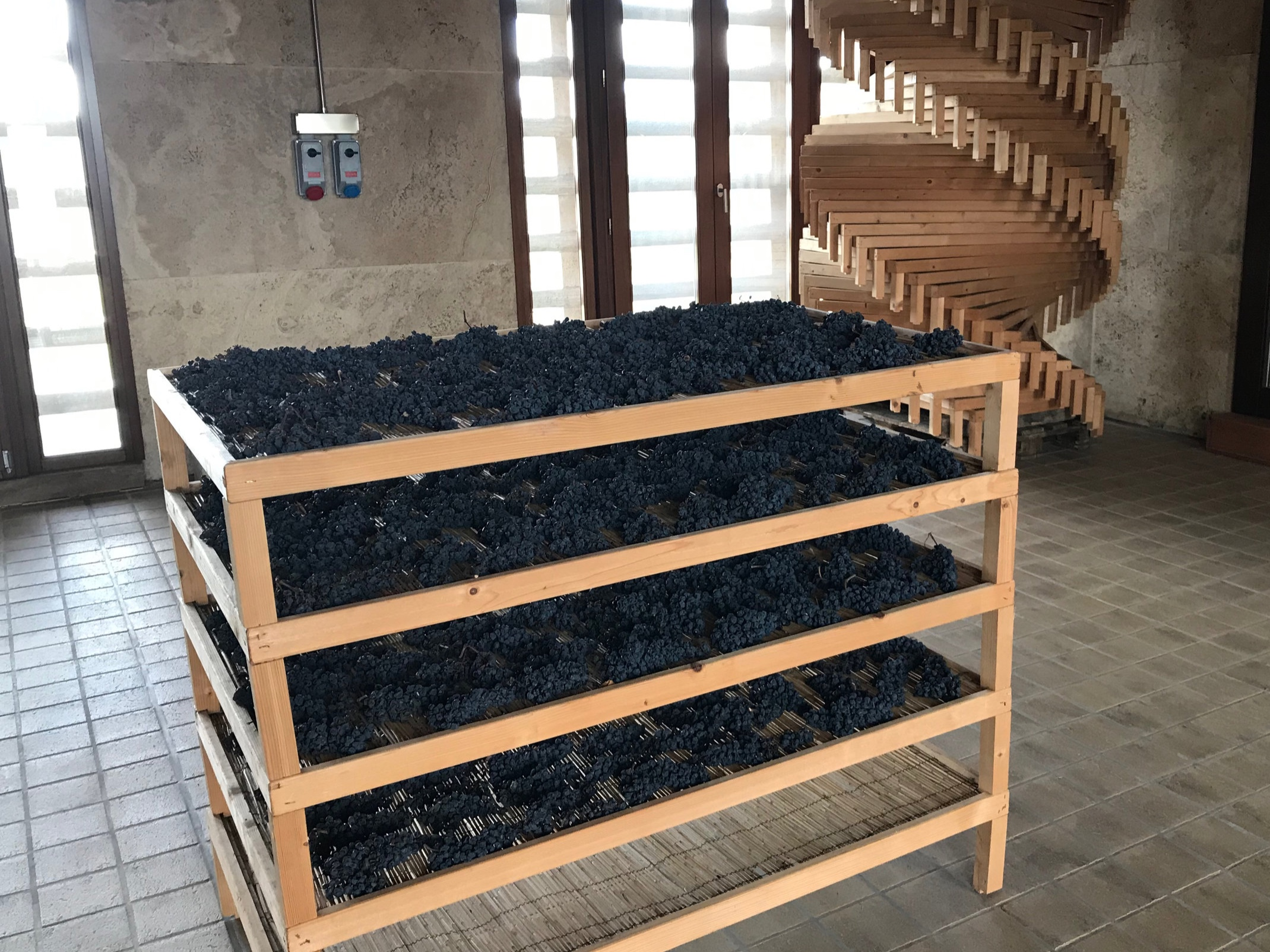 A drying rack for making Passito wines (and a stack of more racks in the background). The drying room is upstairs with windows on each side to make the best use of the weather after harvest.