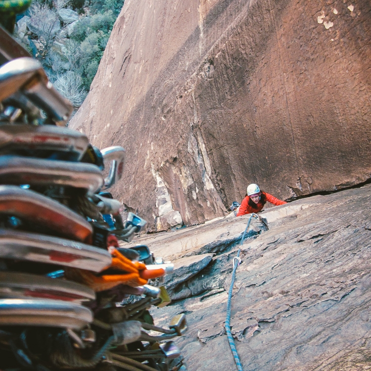 BVMA Climbing 2.jpg