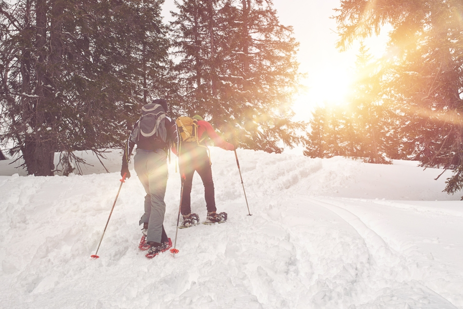 buena_vista_snowshoeing