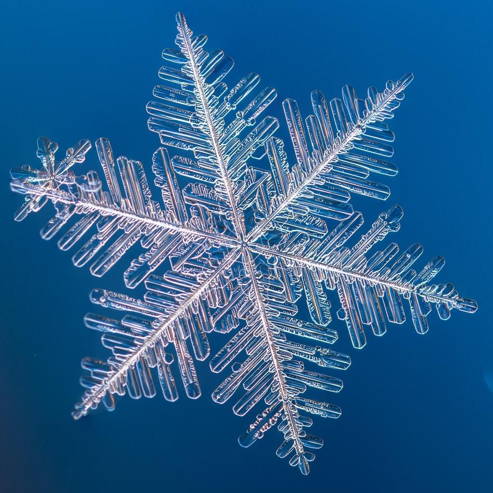 Buena Vista Mountain Adventures Snow Conditions.jpg