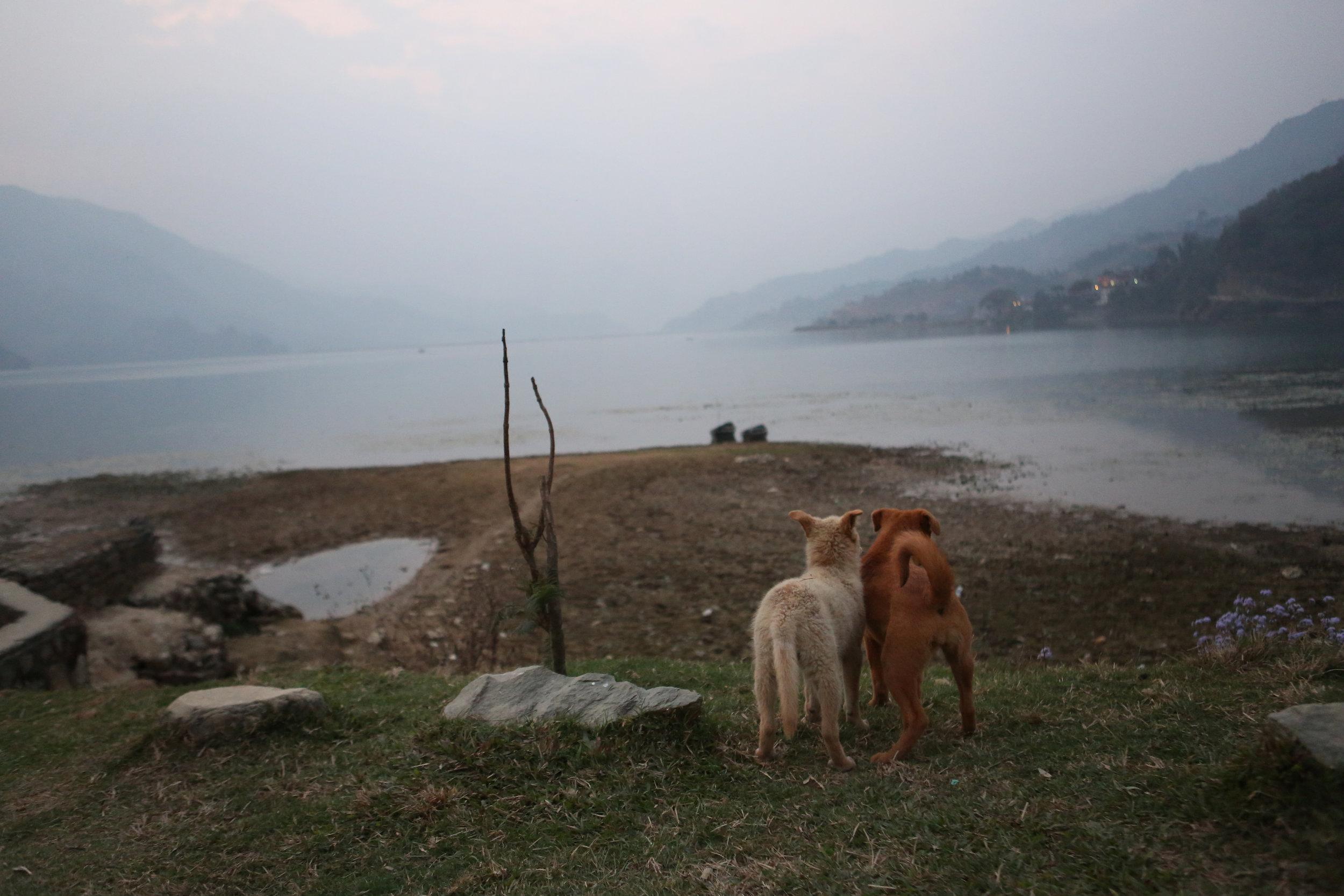 Nepal.choice22.jpg