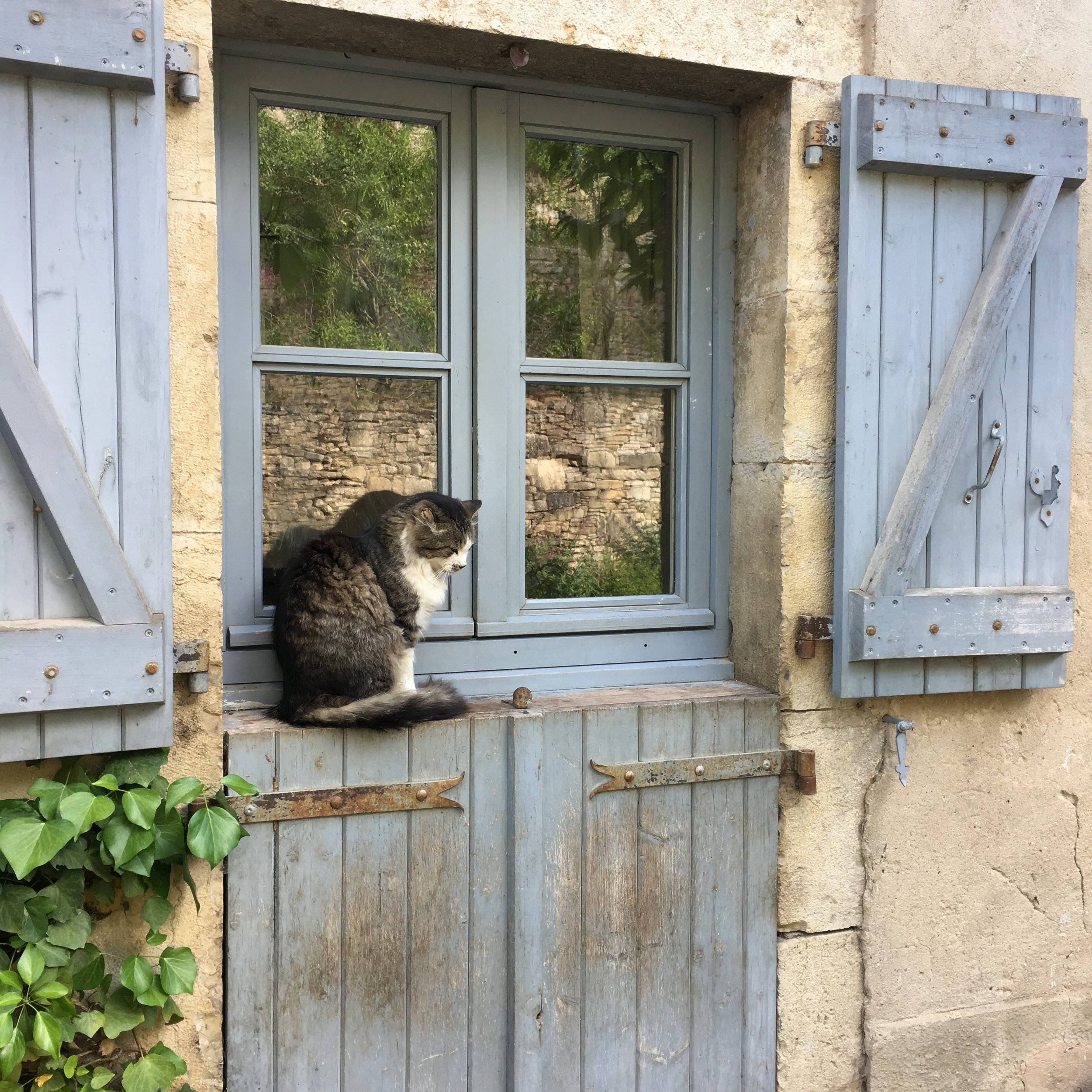 While walking through any town or village in France, you will see beautiful shutters. I love the small stone houses with their weathered wood  volets  in southwestern France. This pair included a sweet kitty who greeted me in the beautiful village of Najac.