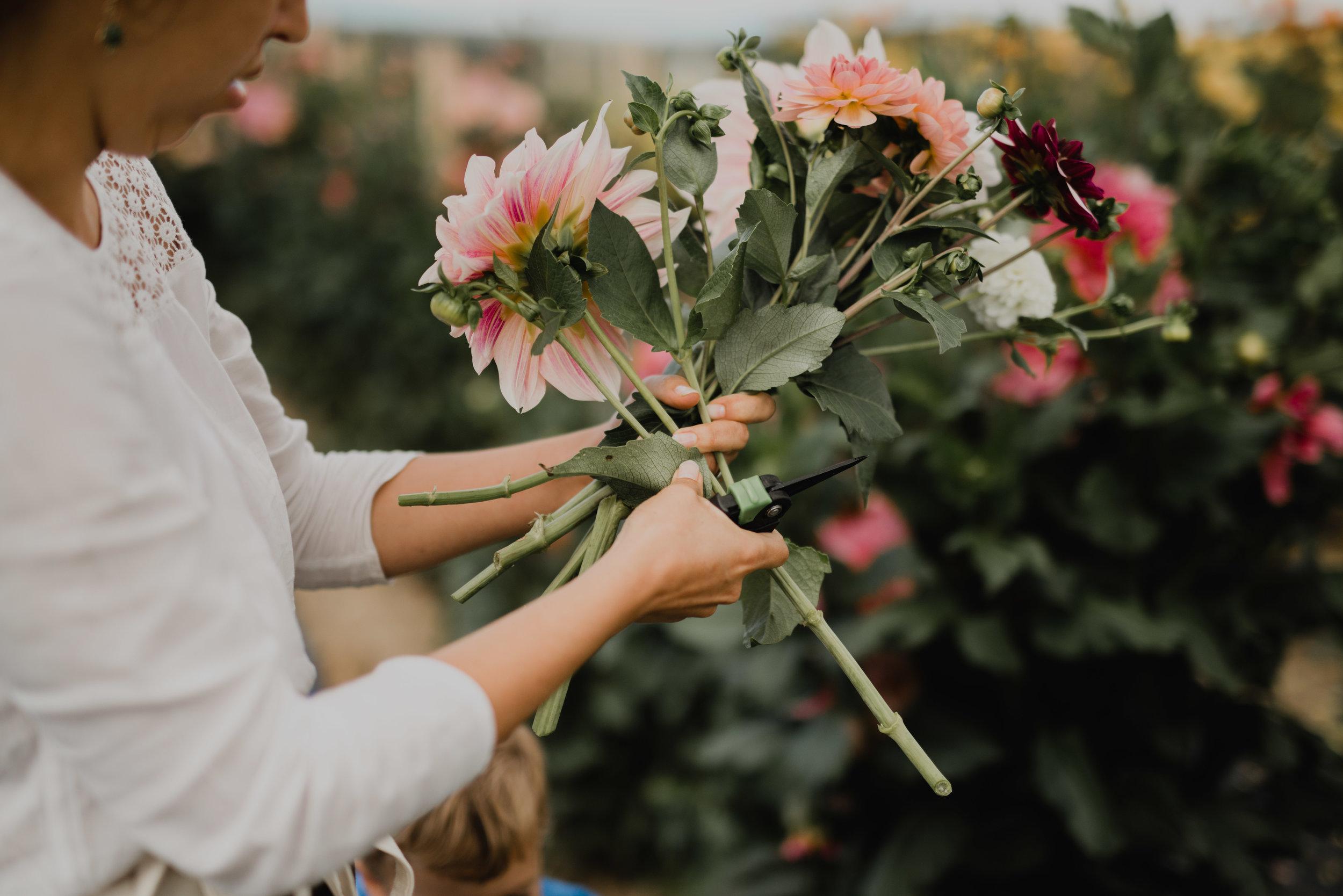 Workshop bouquet floralmercredi 14 août 2019 - 18h (2h minimum) / CHF. 75.- / avec shooting