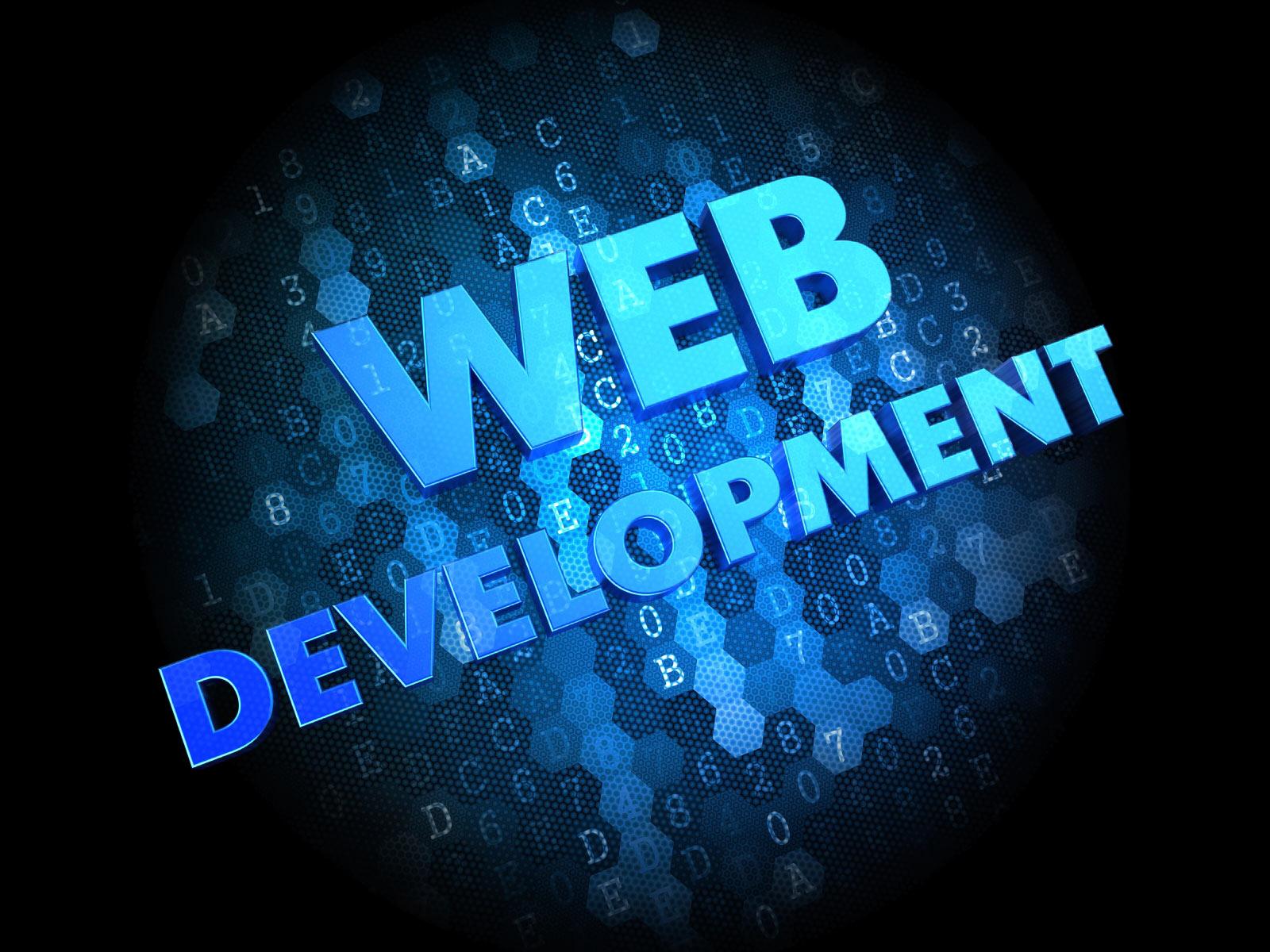Programming & Web Development3.jpg