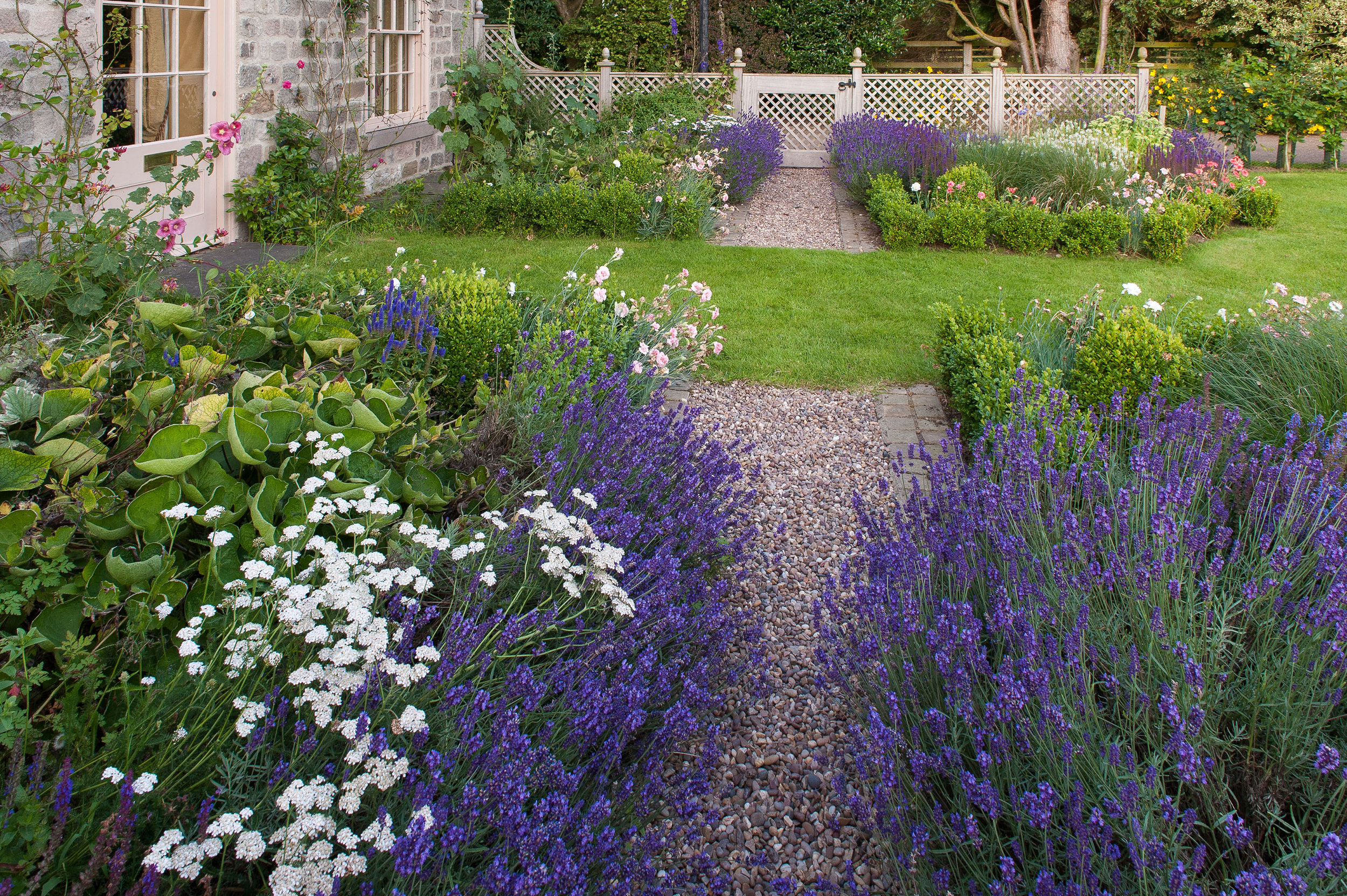 Lavender edged path and hardwood trellis and gate beyond by Stuart Garden Architecture.