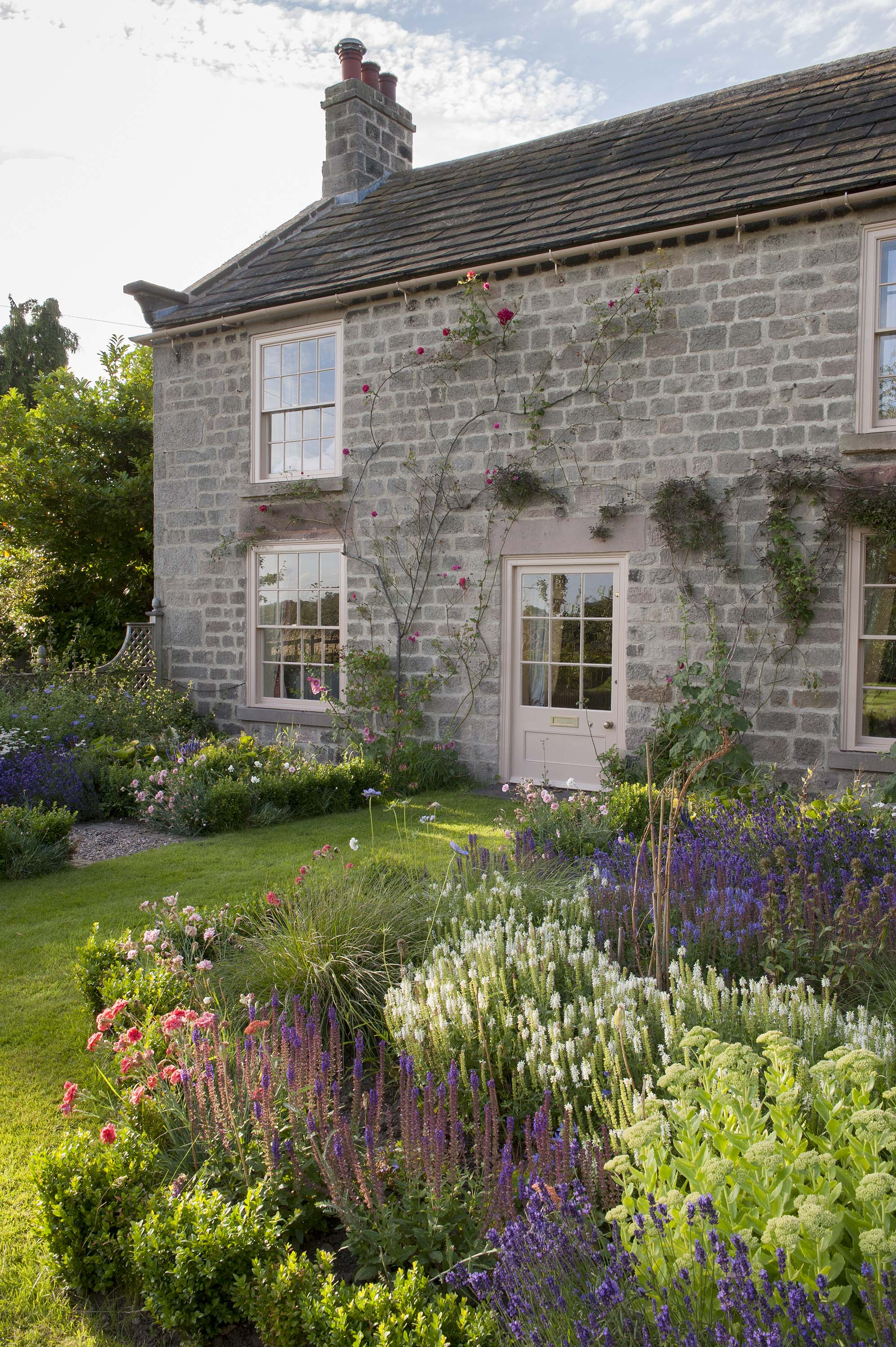 New cottage garden planting with Veronicas, Dianthus, Salvias and Lavender.