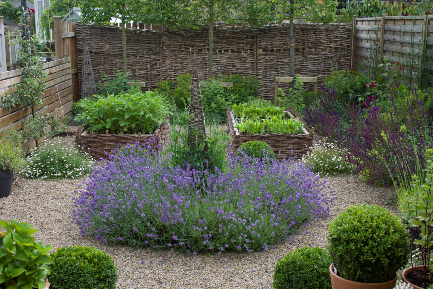 Small potager (decorative vegetable garden) with willow hurdle raised beds and a willow obelisk