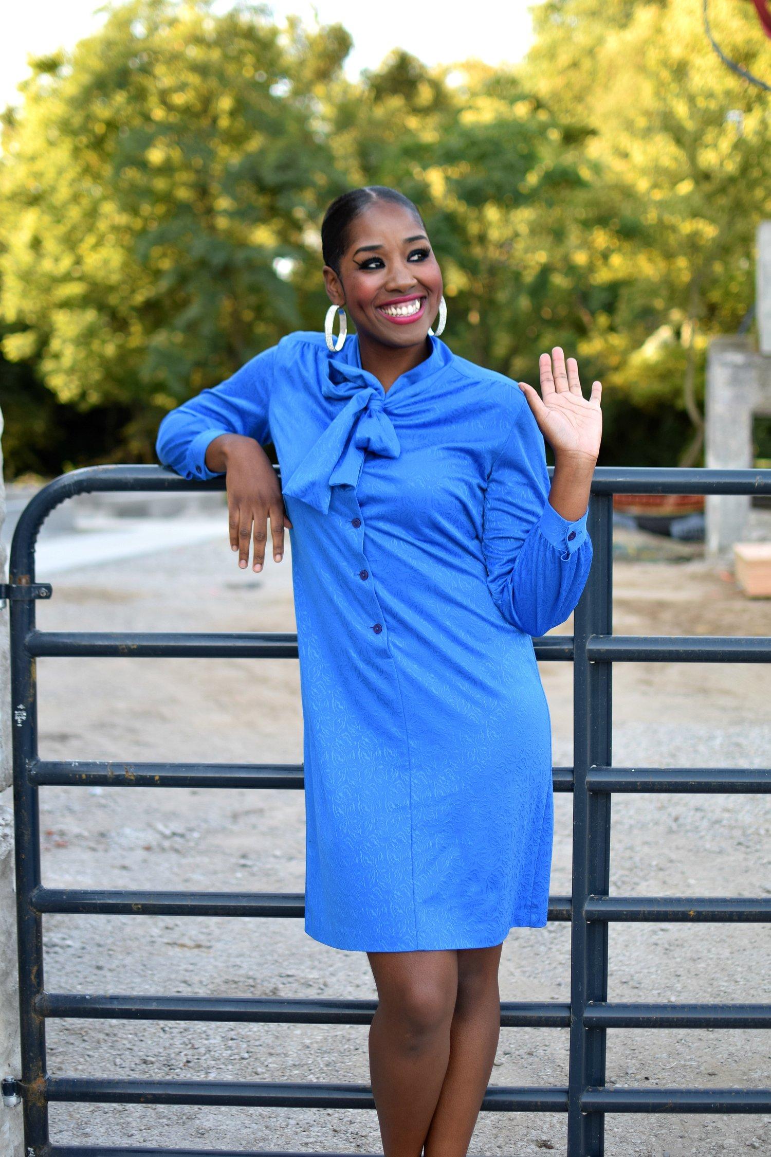 The Royal Detailed Blue Silk Dress.