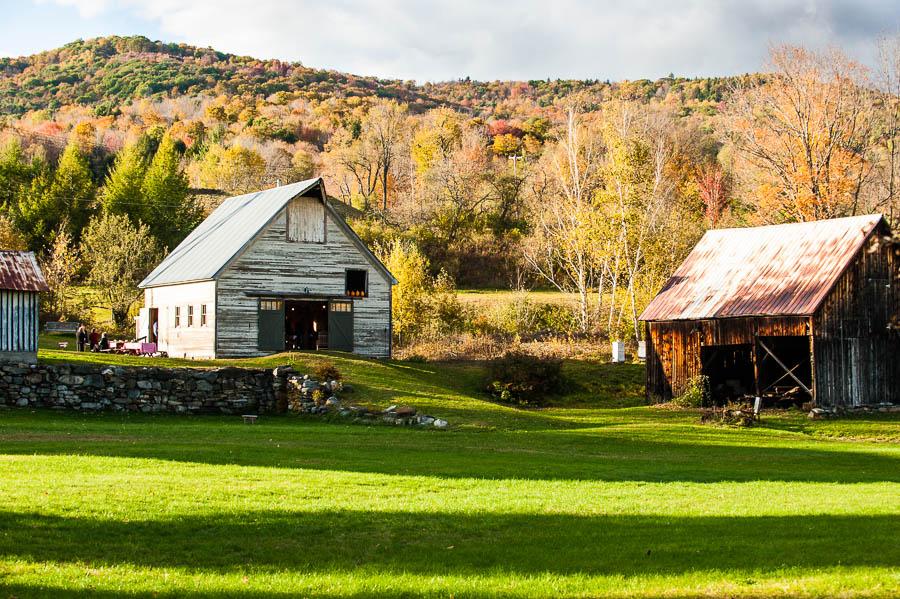 White barn setting.jpg
