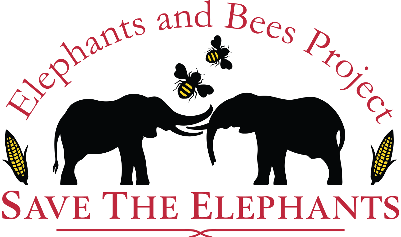 - Learn more about The Elephants and the Bees project.