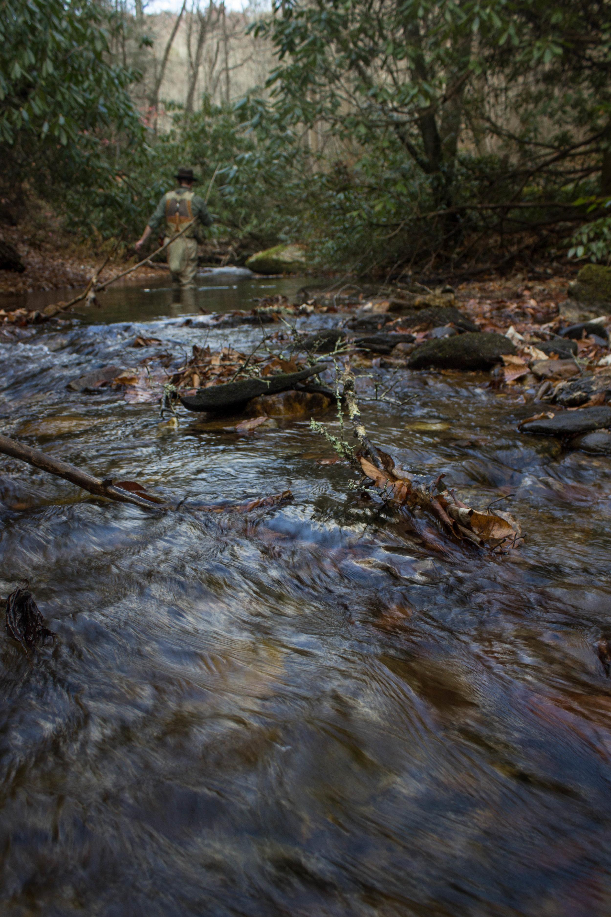 Jillian Schuller Photography - Avery's Creek - 07