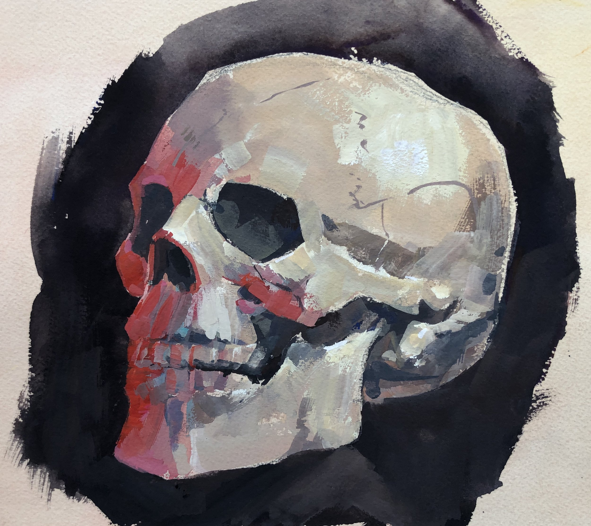 Skull Study - Available