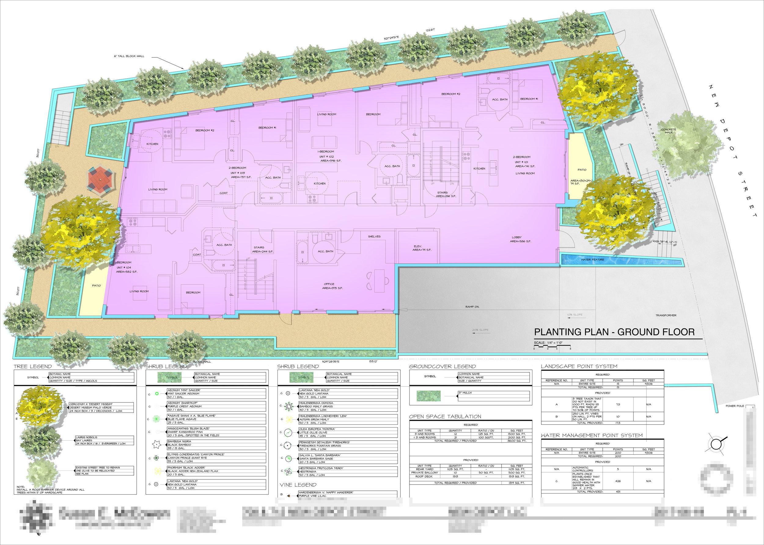 Illustration for a Preliminary Landscape Plan