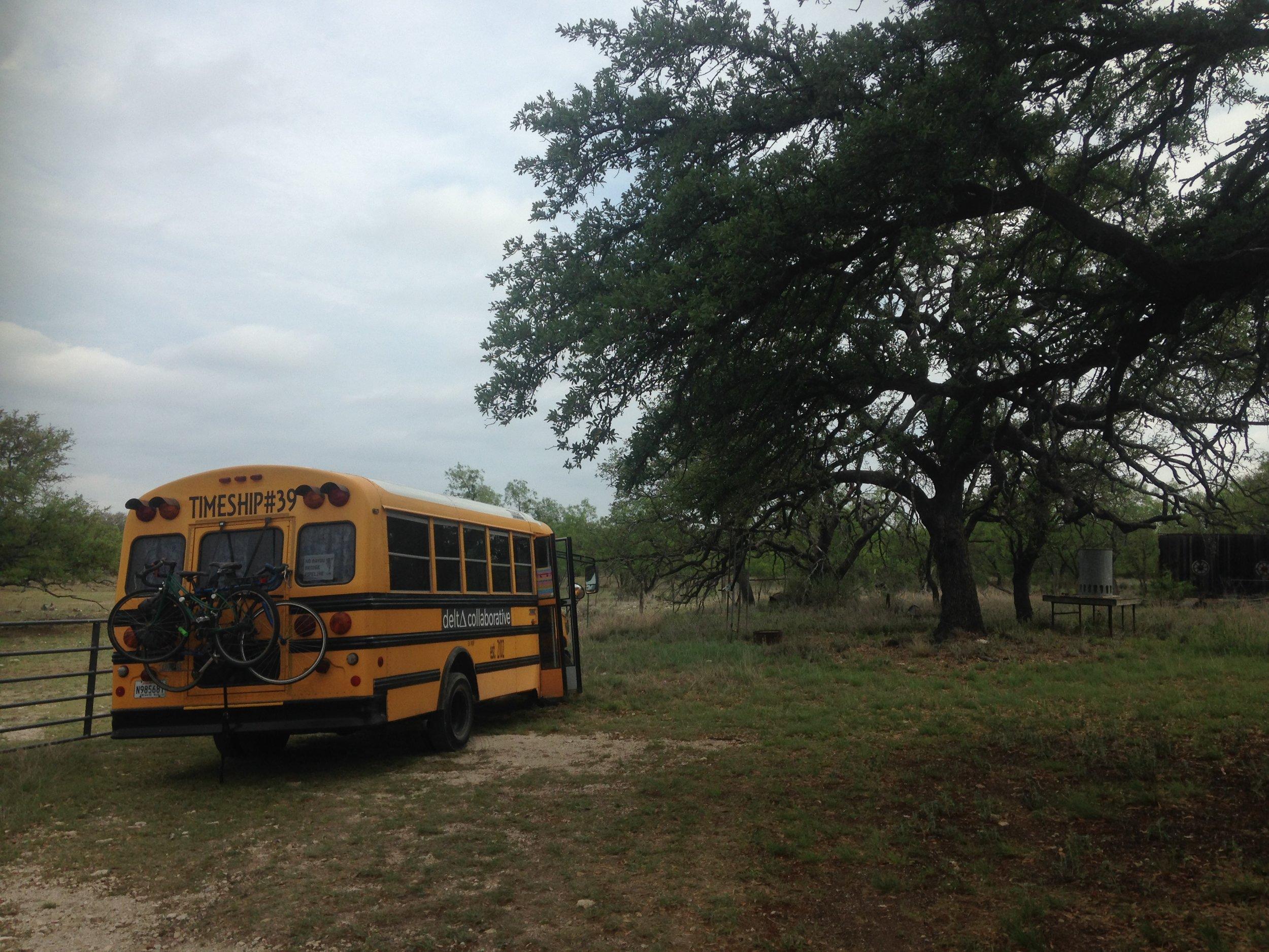 Lynne's ranch and beautiful oak trees.
