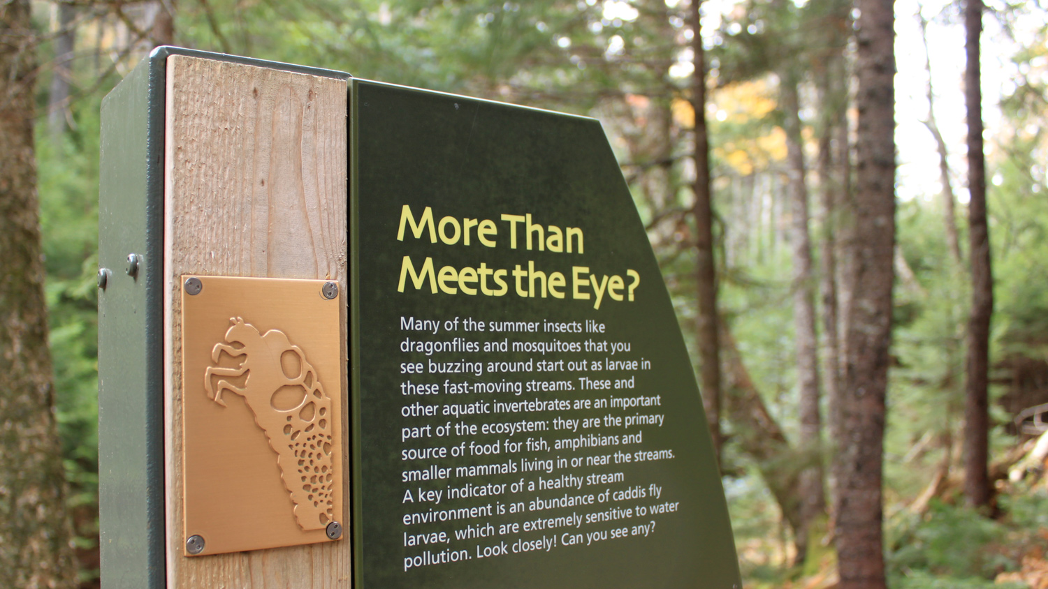 TACTILE SIGNAGE Trail signage includes tactile sculptures and rubbing plates of the park's many creatures.