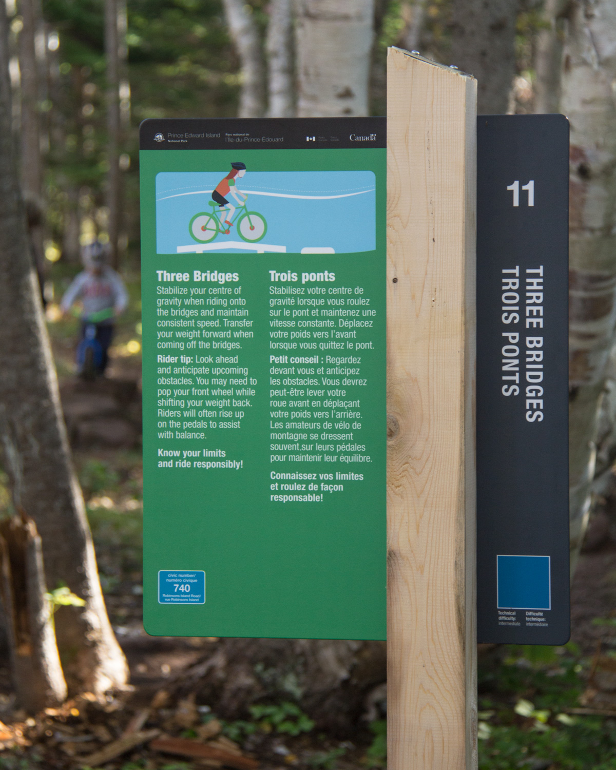 LEARN TO MOUNTAIN BIKE Integral to the trail experience are landscaped elements which help people of all ages learn to mountain bike. Signs indicate the difficulty of each feature, explain how it is to be used, and give tips to help people improve their skills.