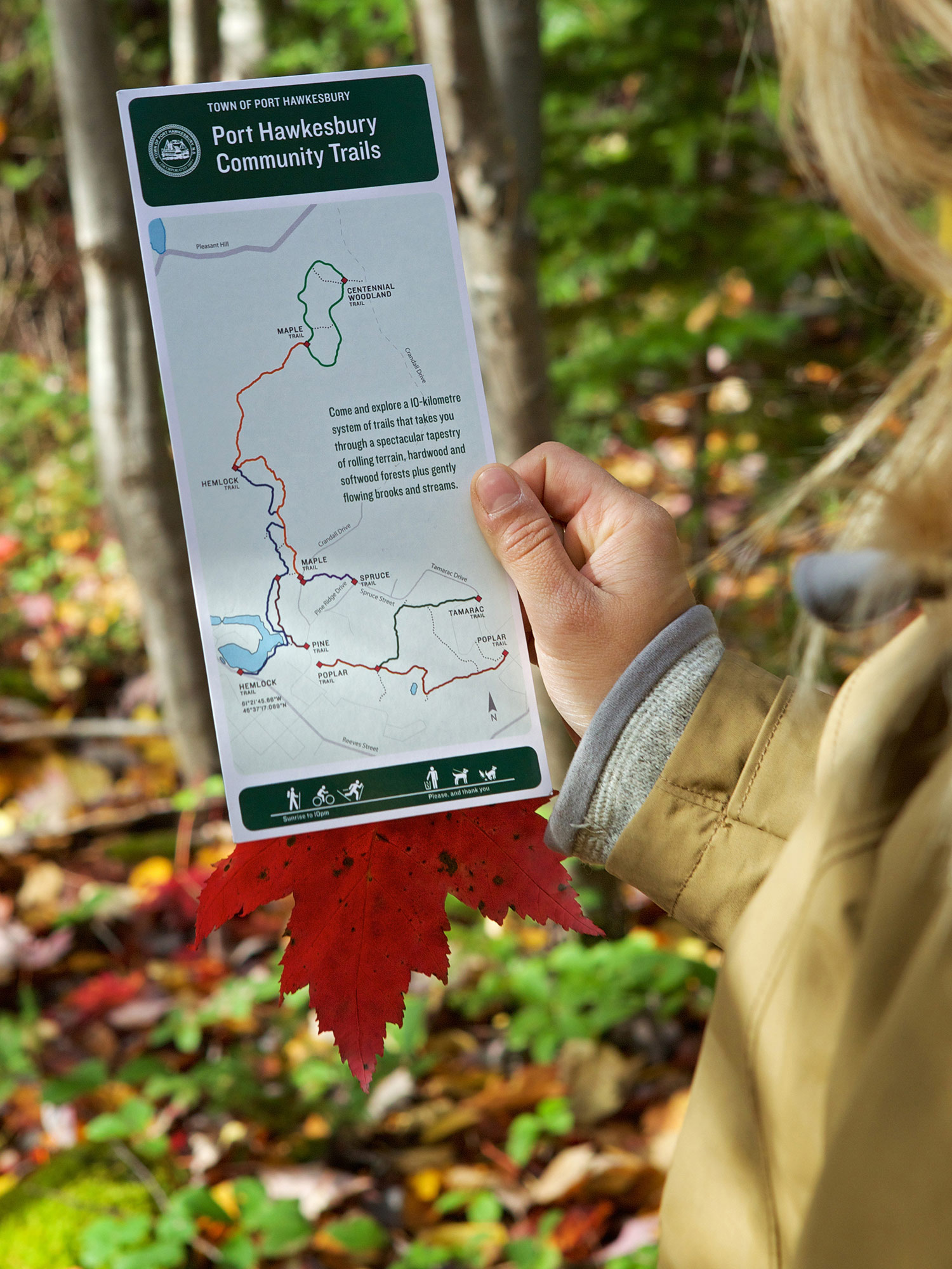 PRINT COLLATERAL Printed rack cards are available at visitor information centres present the network of seven trails, along with trail usage information.