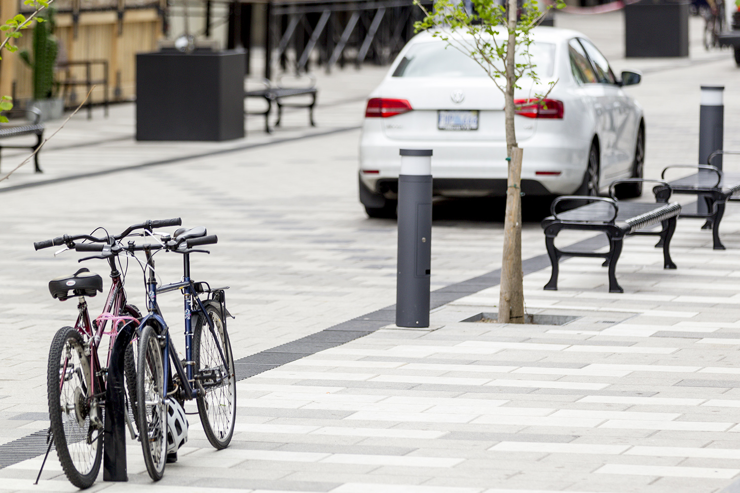 Aligning trees, benches, and lamp posts limits the obstructions to pedestrians and ensures a large path of travel. This design also makes the street easier to navigate for those with limited mobility or visual impairments.